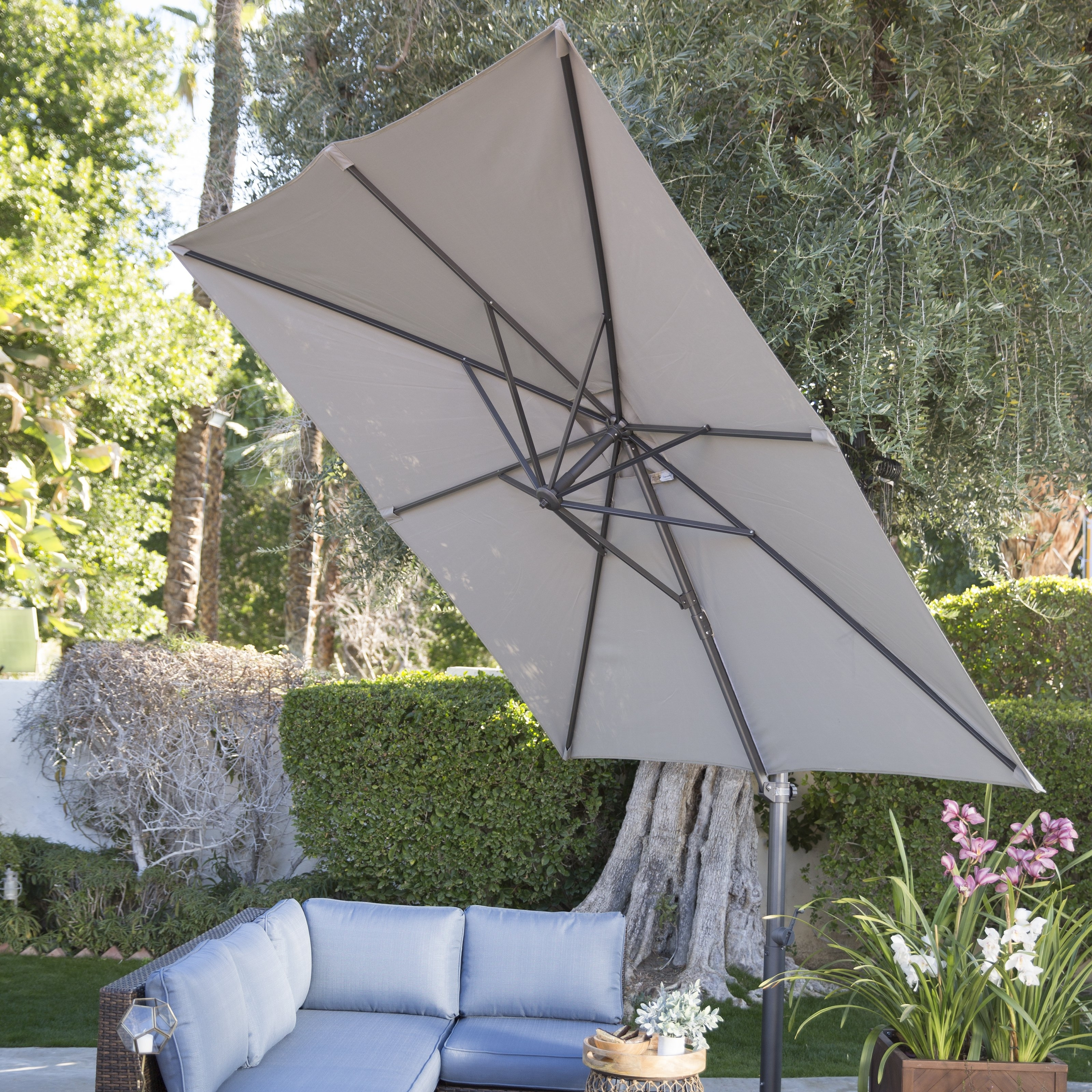 Hayneedle In Coral Coast Offset Patio Umbrellas (View 11 of 20)