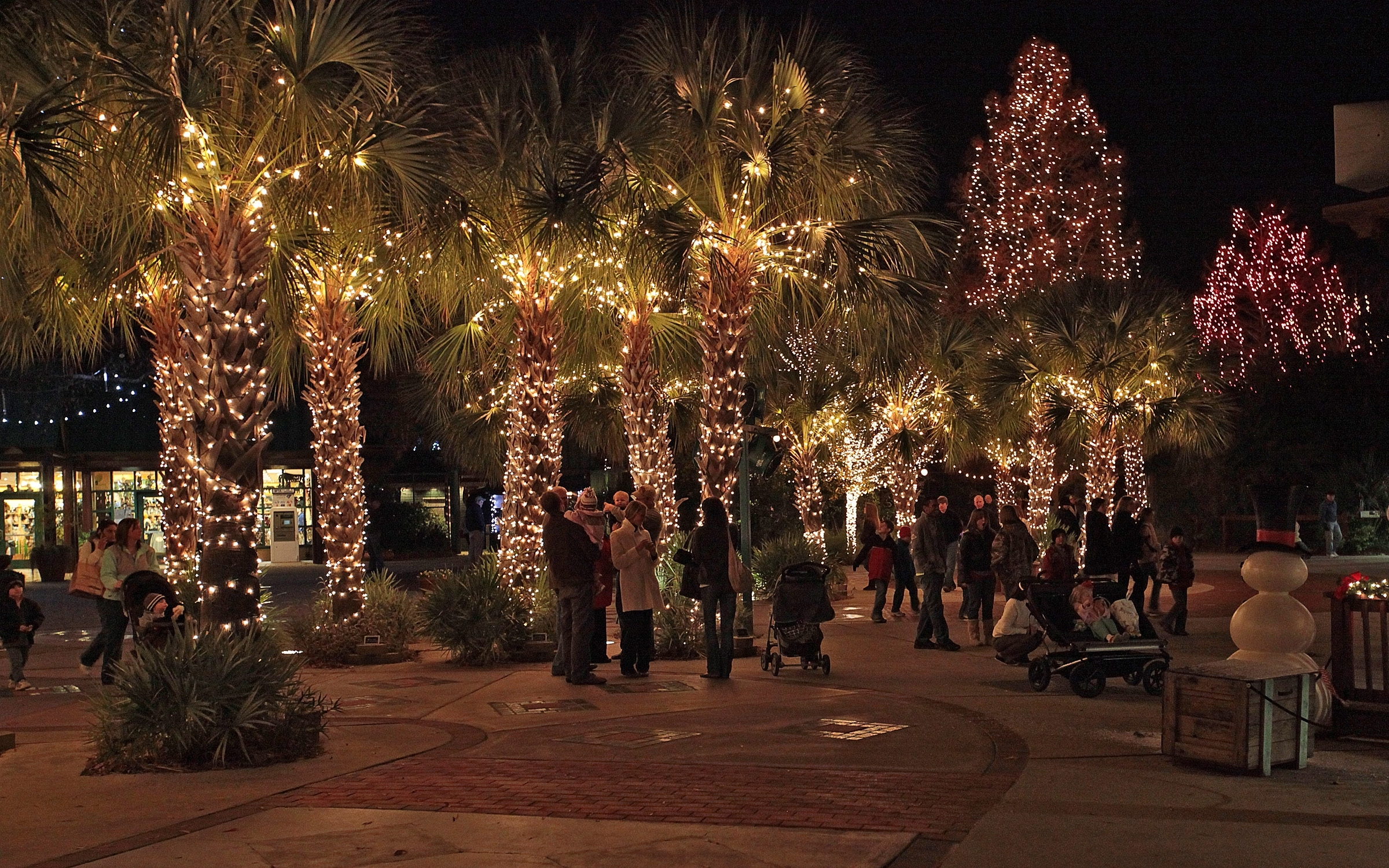Outdoor Lanterns For Christmas For Well Known Outdoor Solar Decorations String Lighting On Palm Trees In (View 4 of 20)