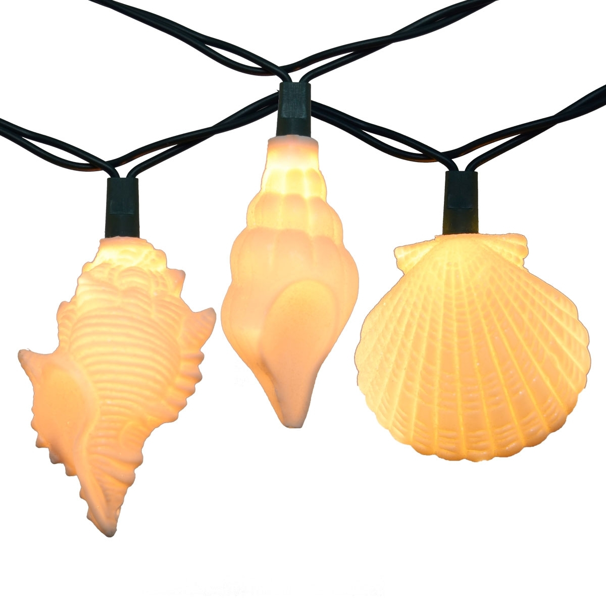 Outdoor Tropical Lanterns With Regard To Current Sea Shells Party String Lights – 10 Lights (View 13 of 20)