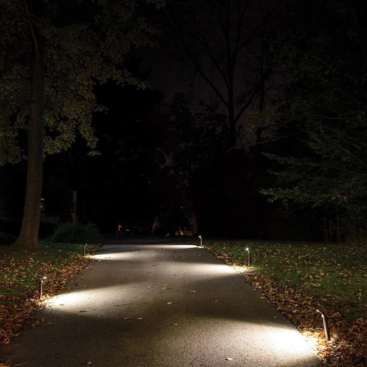 Outdoor Walkway Lighting (View 16 of 20)