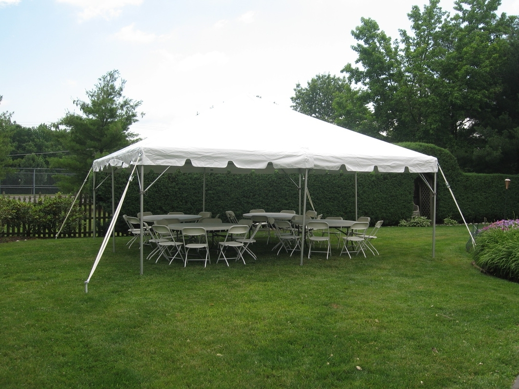 Patio Umbrellas For Rent In Recent Rentals / Linens – Westmont Party (View 12 of 20)