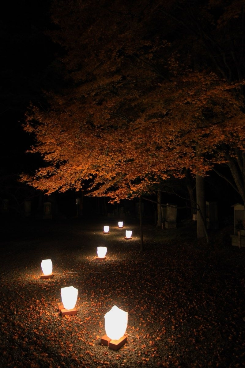 Popular Japanese Garden Lights Mptfk.exblog (View 12 of 20)