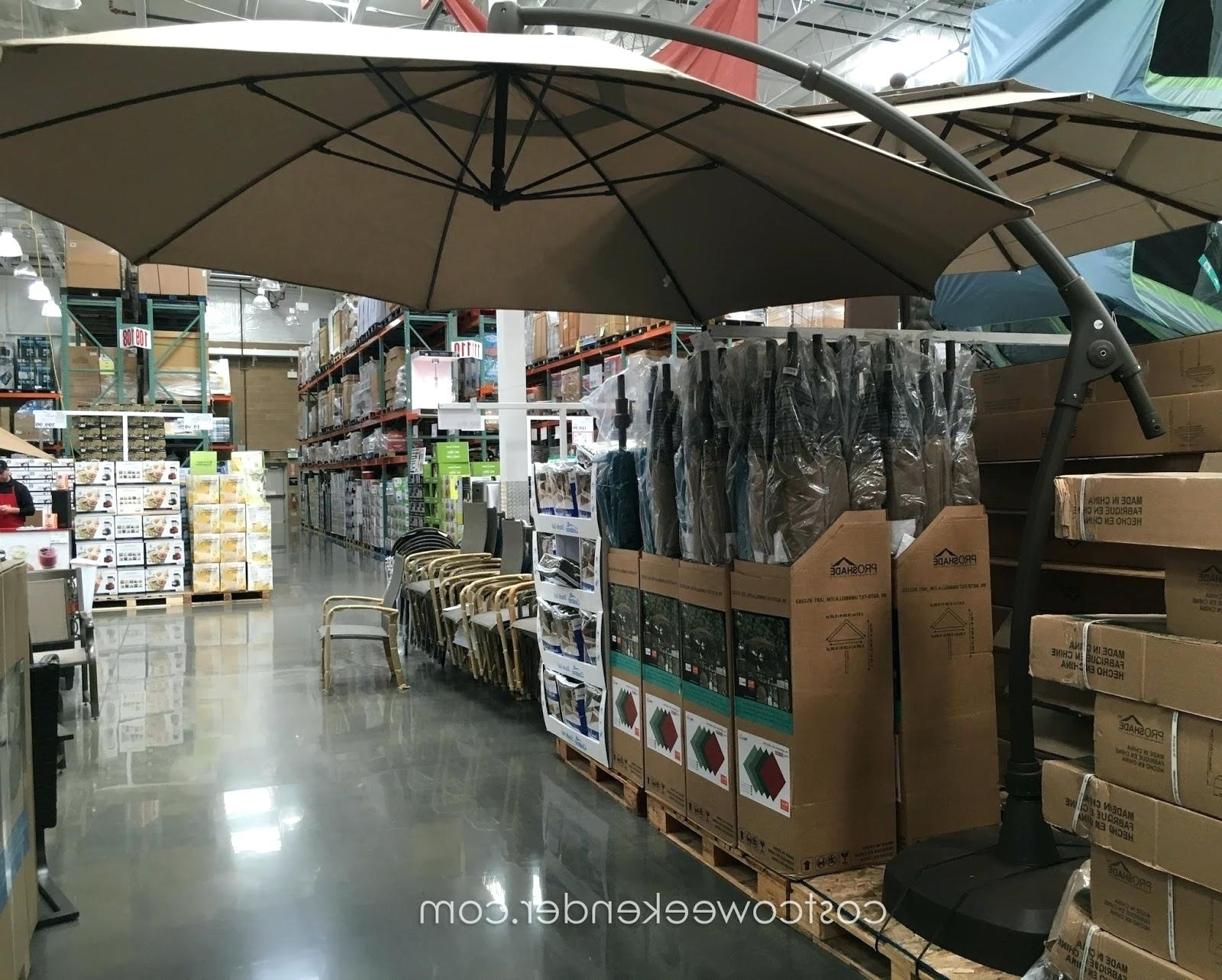 Preferred 11 Umbrella Sunbrella Replacement Canopy Foot Costco Ft Offset Regarding Costco Cantilever Patio Umbrellas (View 13 of 20)