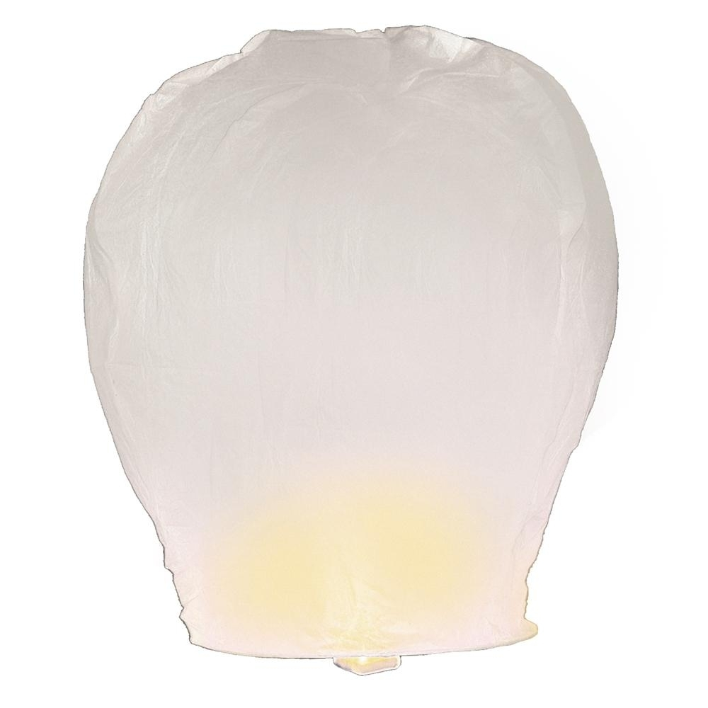 Preferred Lumabase Hot Pink Sky Lanterns (Set Of 4) 74104 – The Home Depot In Outdoor Memorial Lanterns (View 12 of 20)