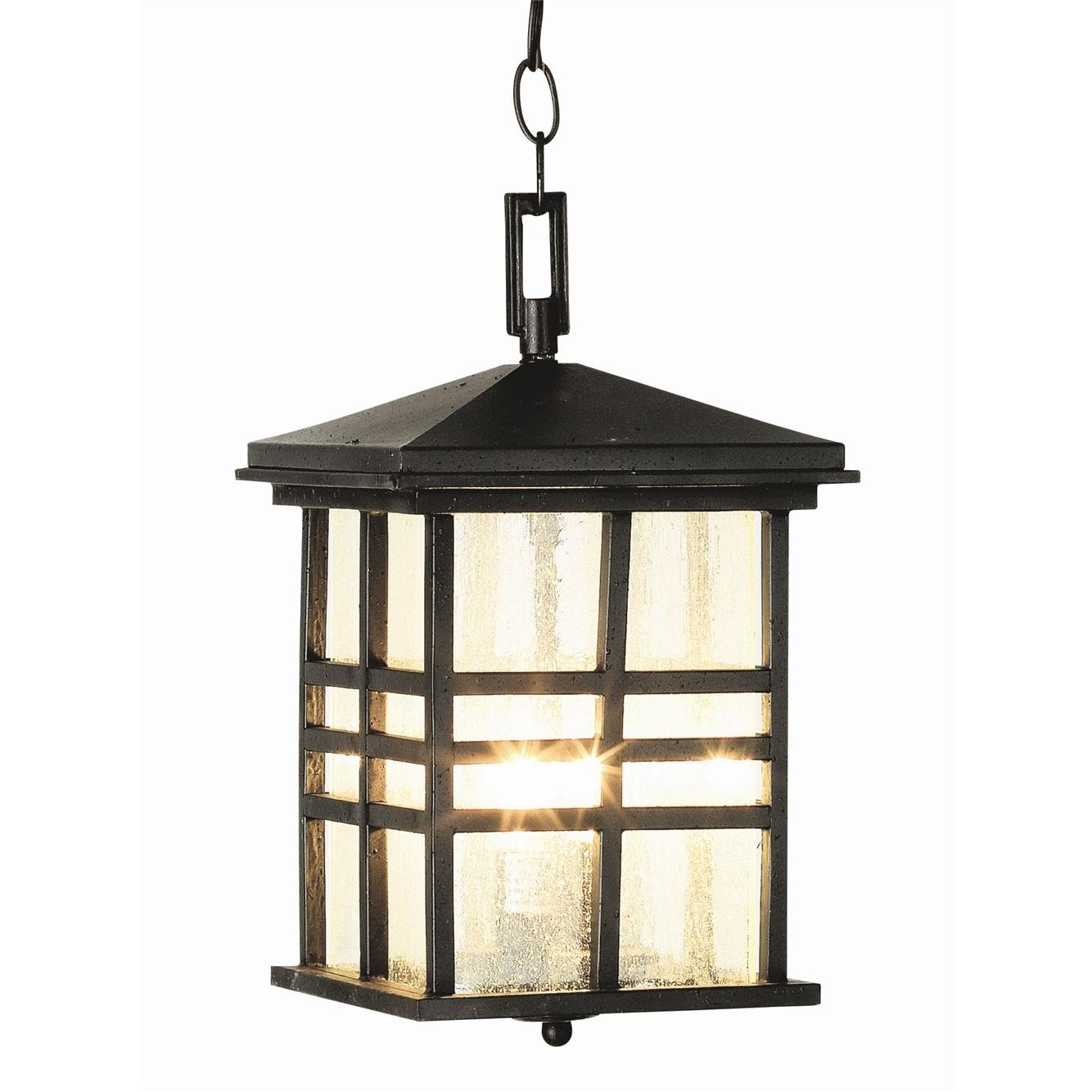 Rustic Craftsman Outdoor Hanging Lanterntrans Globe (View 17 of 20)