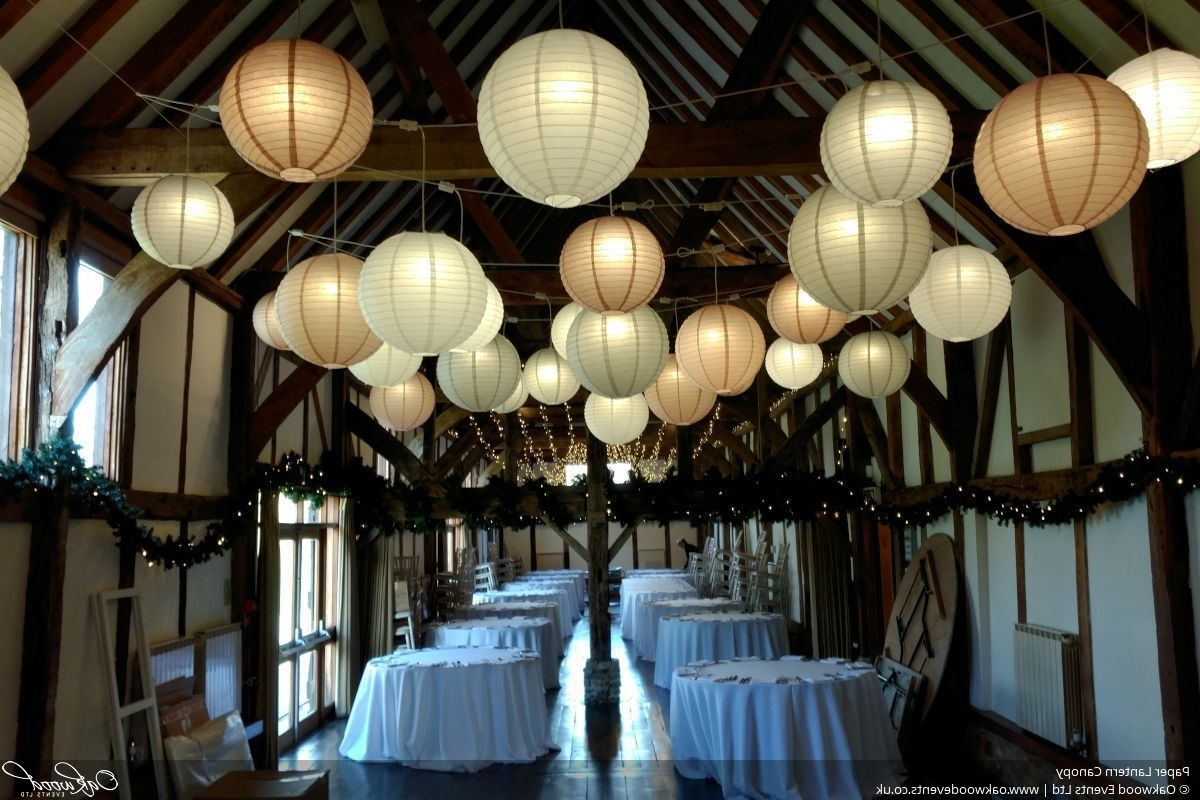 Trendy Paper Lantern Hire (View 8 of 20)
