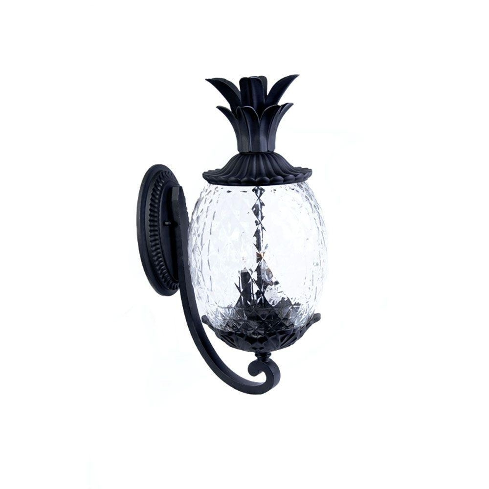 Well Known Outdoor Pineapple Lanterns For Acclaim Lighting Lanai Collection 2 Light Matte Black Outdoor Wall (View 18 of 20)