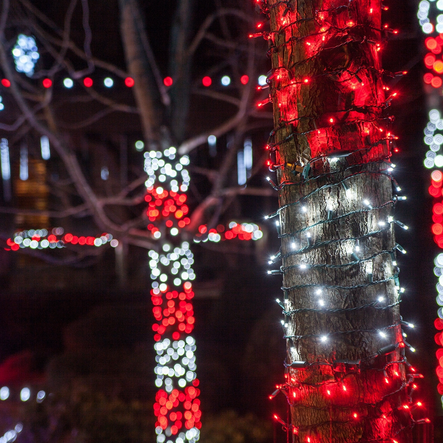 Well Known Outdoor Xmas Lanterns Throughout Outdoor Christmas Decorating Ideas – Yard Envy (View 19 of 20)