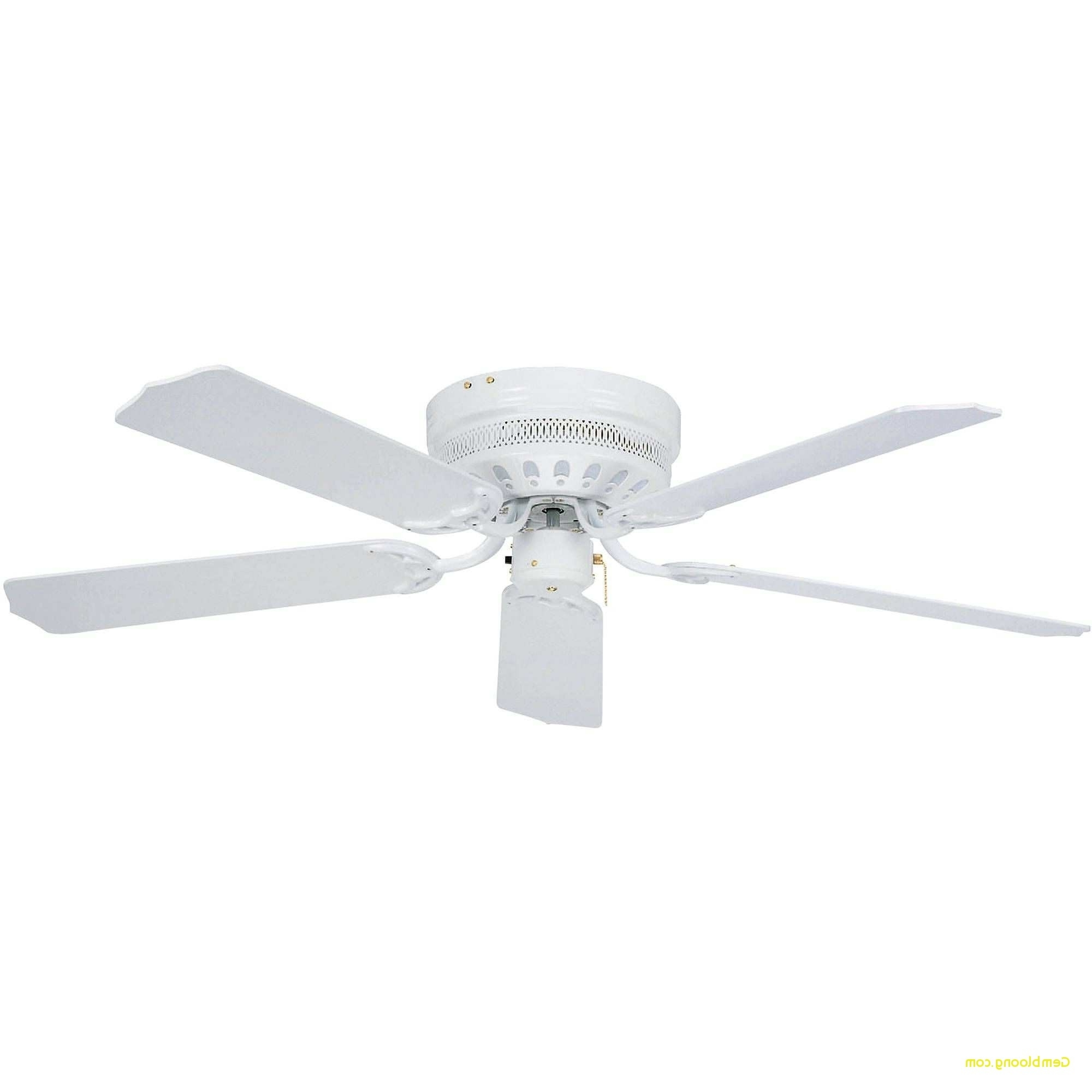 Featured Photo of Outdoor Ceiling Fans Under $50