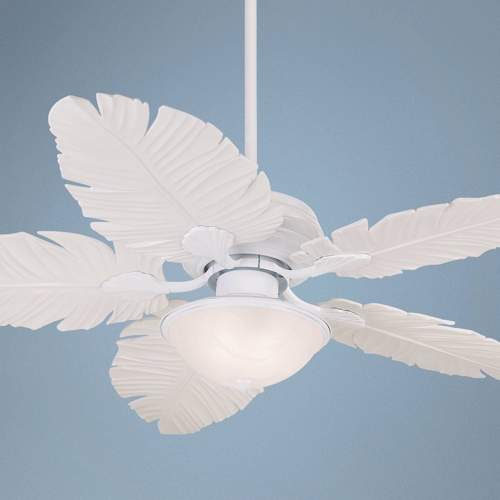Featured Photo of Casa Vieja Outdoor Ceiling Fans