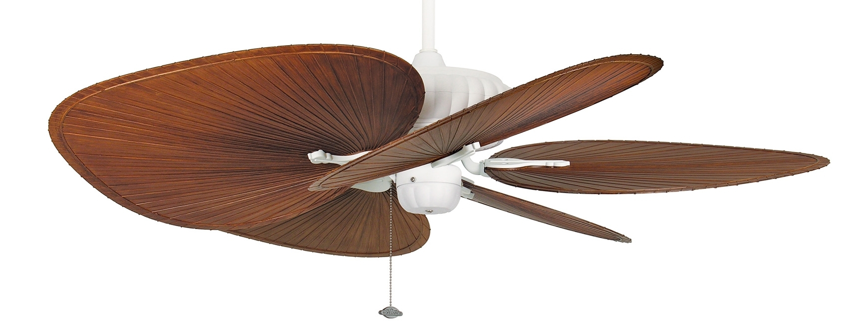 Belleria Ceiling Fanfanimation Inside Most Current Gold Coast Outdoor Ceiling Fans (View 3 of 20)