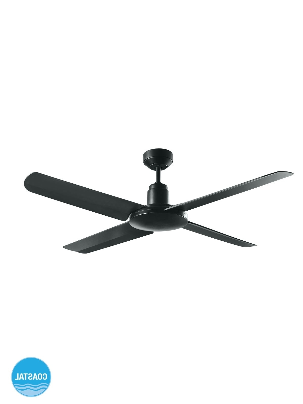 Ceiling Fan (Gallery 9 of 20)