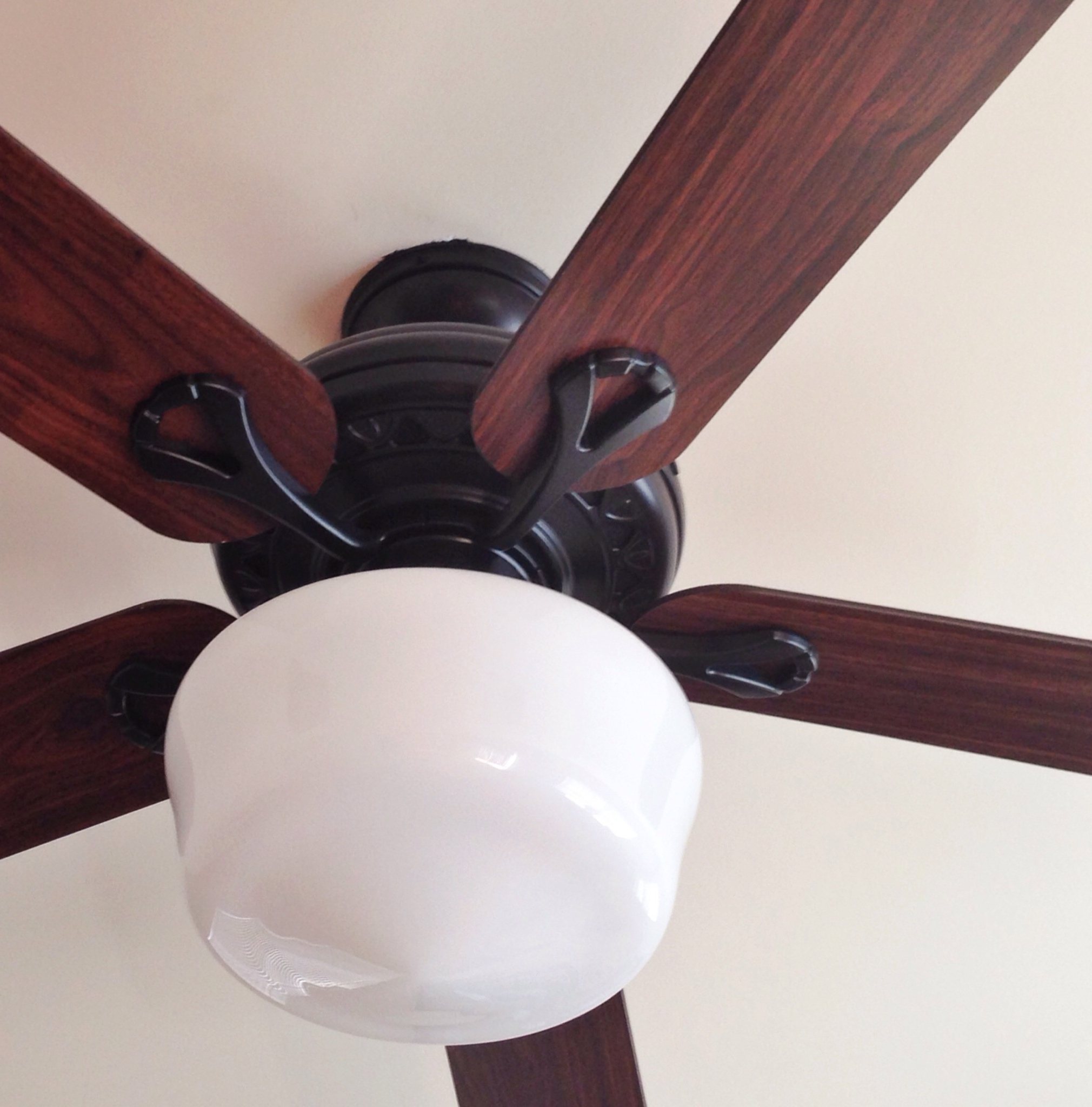 Ceiling Fan With Schoolhouse Light Luxury Home Depot Ceiling Fans Regarding Well Liked Outdoor Ceiling Fans With Schoolhouse Light (View 20 of 20)