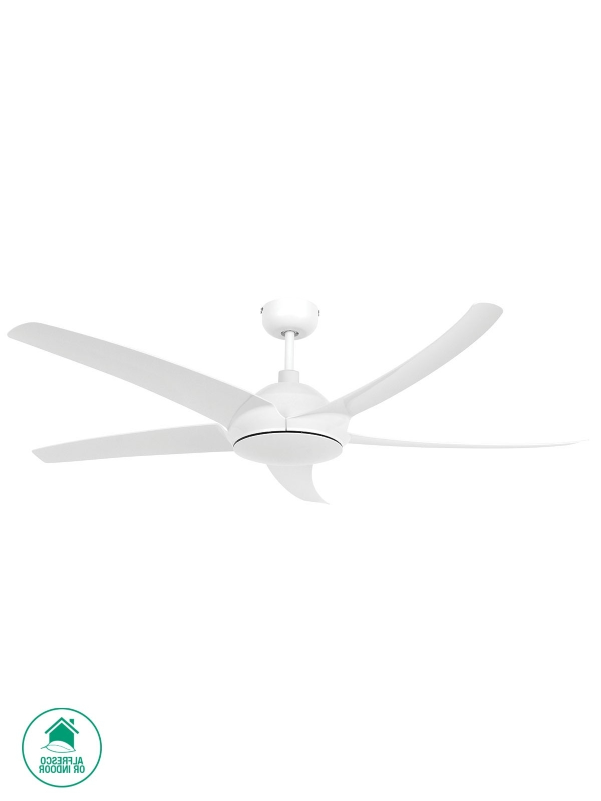 Ceiling Fans (Gallery 12 of 20)