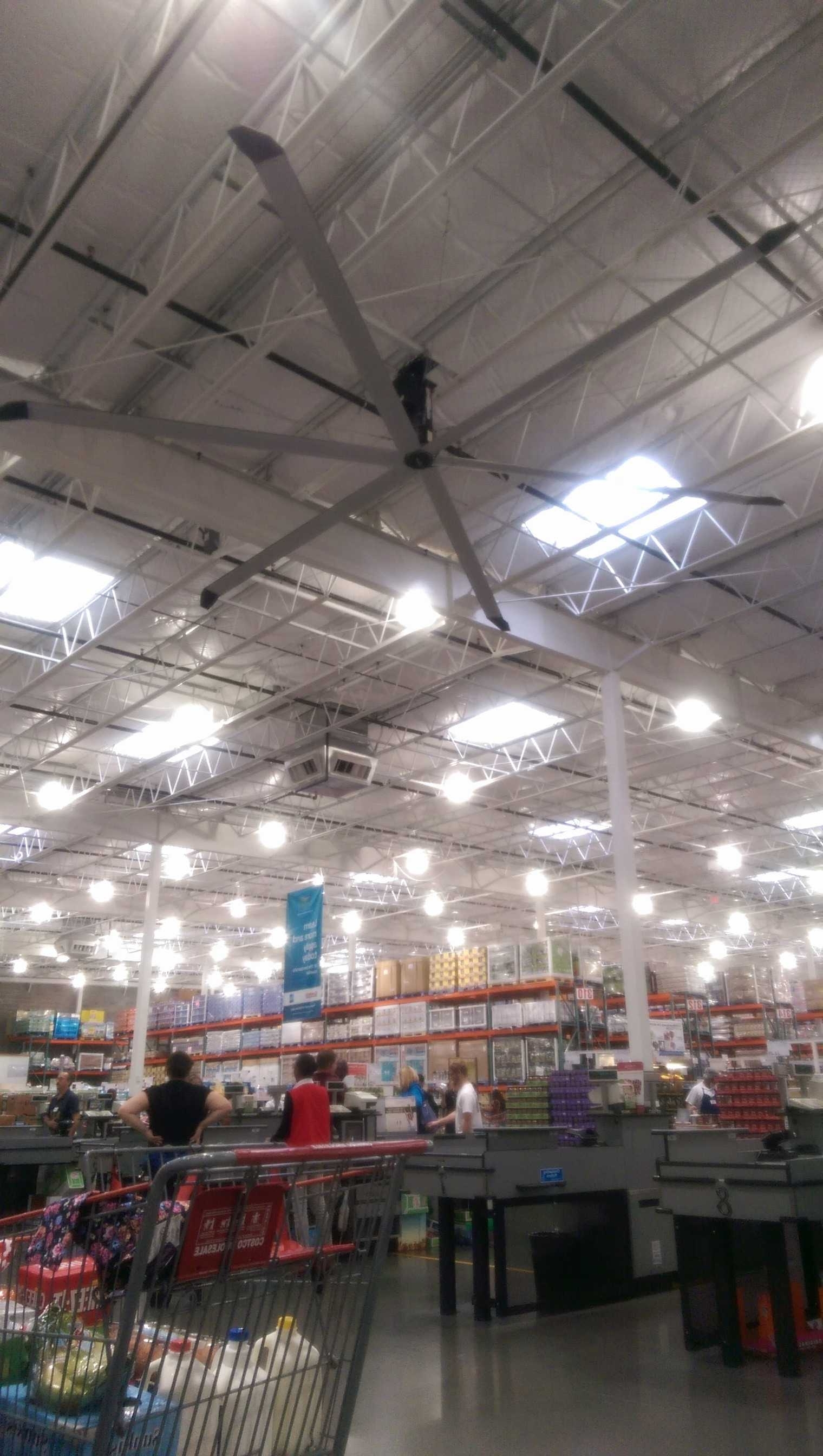 Ceiling Fans At Costco – Pranksenders Inside Fashionable Outdoor Ceiling Fans At Costco (Gallery 16 of 20)