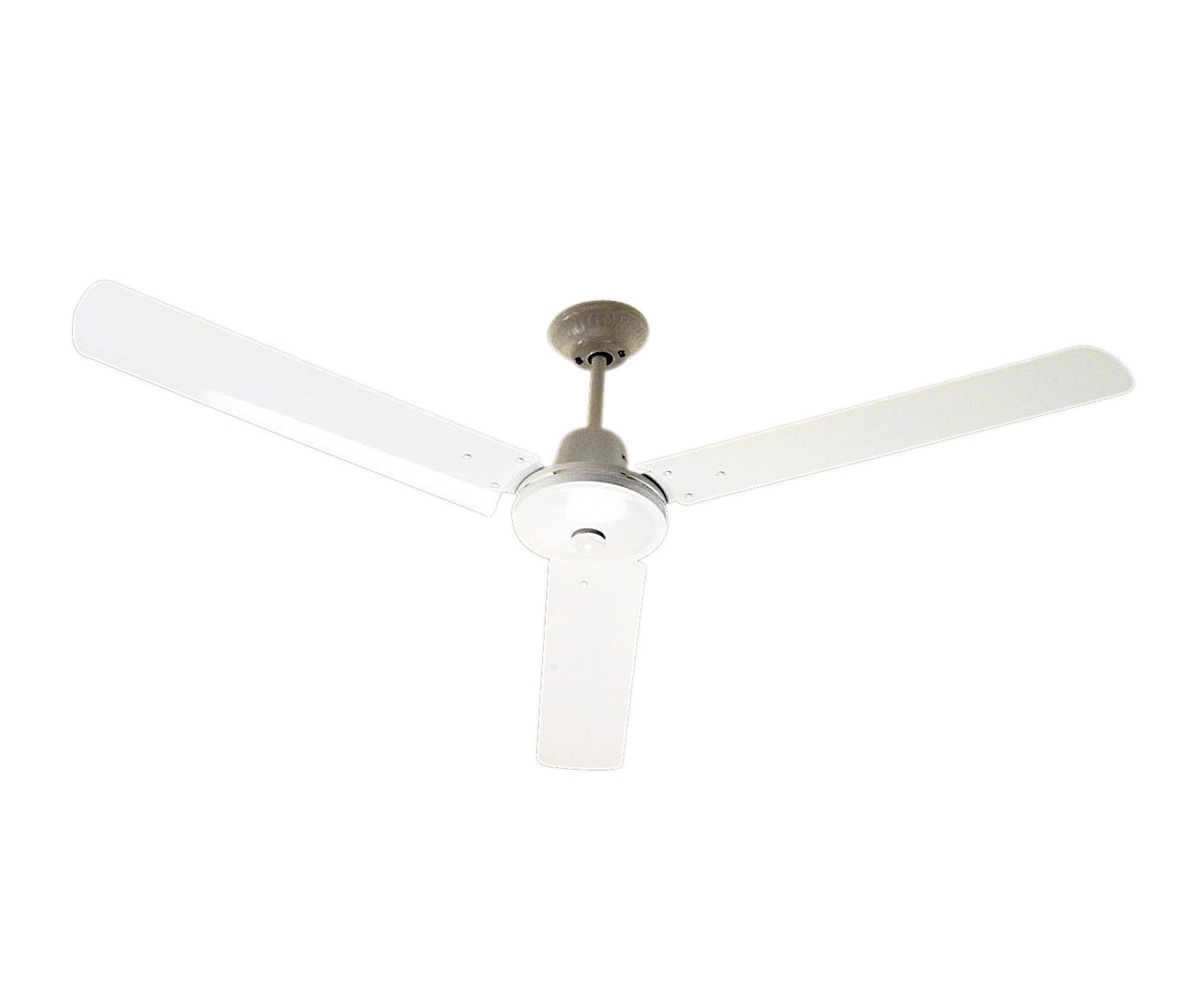 Ceiling Fans – Clipsalschneider Electric Pertaining To Latest Sunshine Coast Outdoor Ceiling Fans (View 7 of 20)