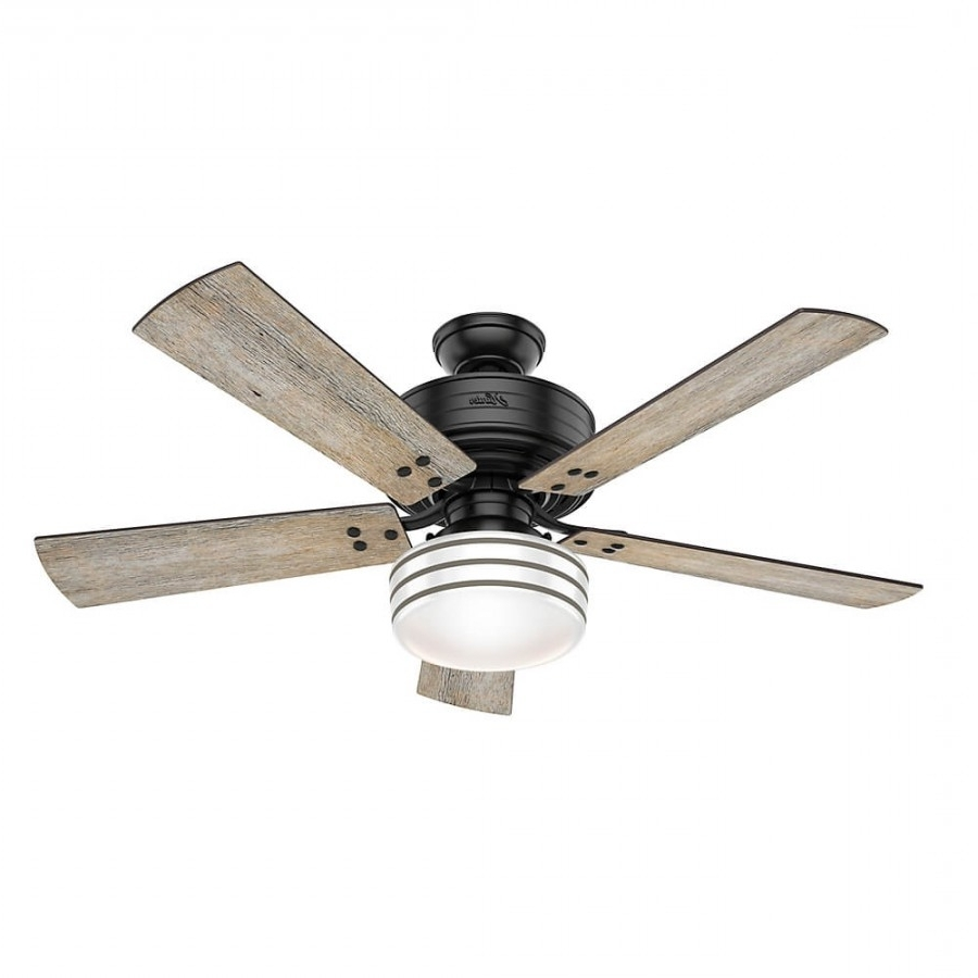 Current Grey Outdoor Ceiling Fans With Regard To Hunter 55078 Cedar Key 1 Led Light 52 Inch Outdoor Ceiling Fan In (Gallery 18 of 20)
