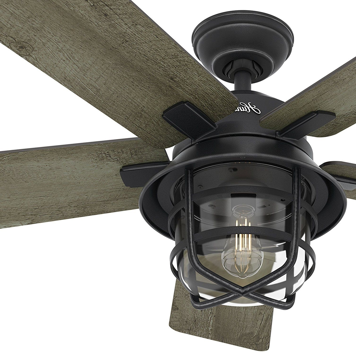 "Current Hunter Fan 54"" Weathered Zinc Outdoor Ceiling Fan With A Clear Glass Throughout Hunter Indoor Outdoor Ceiling Fans With Lights (View 17 of 20)"