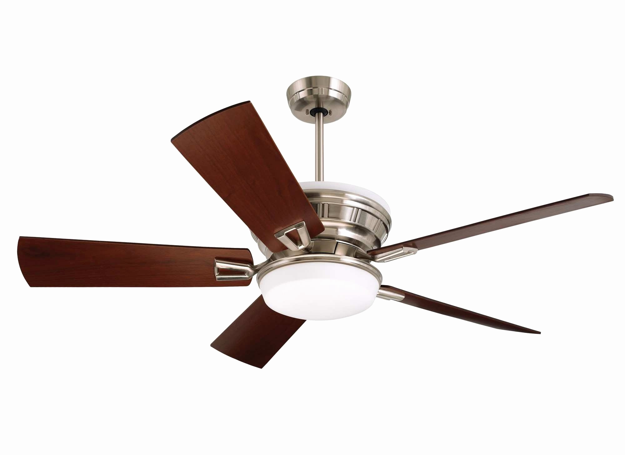 Famous Best Energy Star Ceiling Fans Luxury Home Depot Outdoor Ceiling Fans Inside Energy Star Outdoor Ceiling Fans With Light (View 8 of 20)