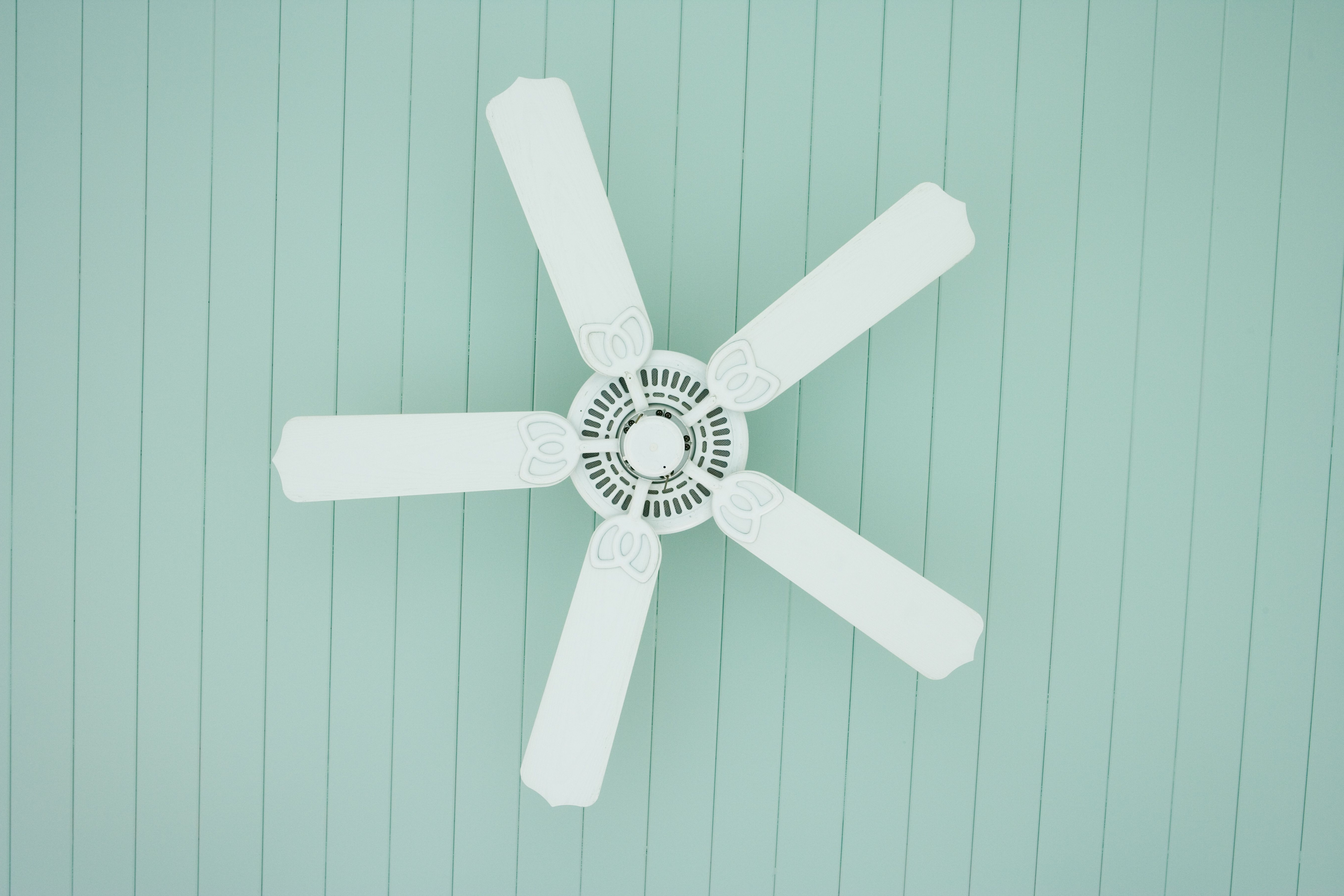 Famous Outdoor Ceiling Fans Under $50 With Regard To The 7 Best Ceiling Fans To Buy In (View 14 of 20)