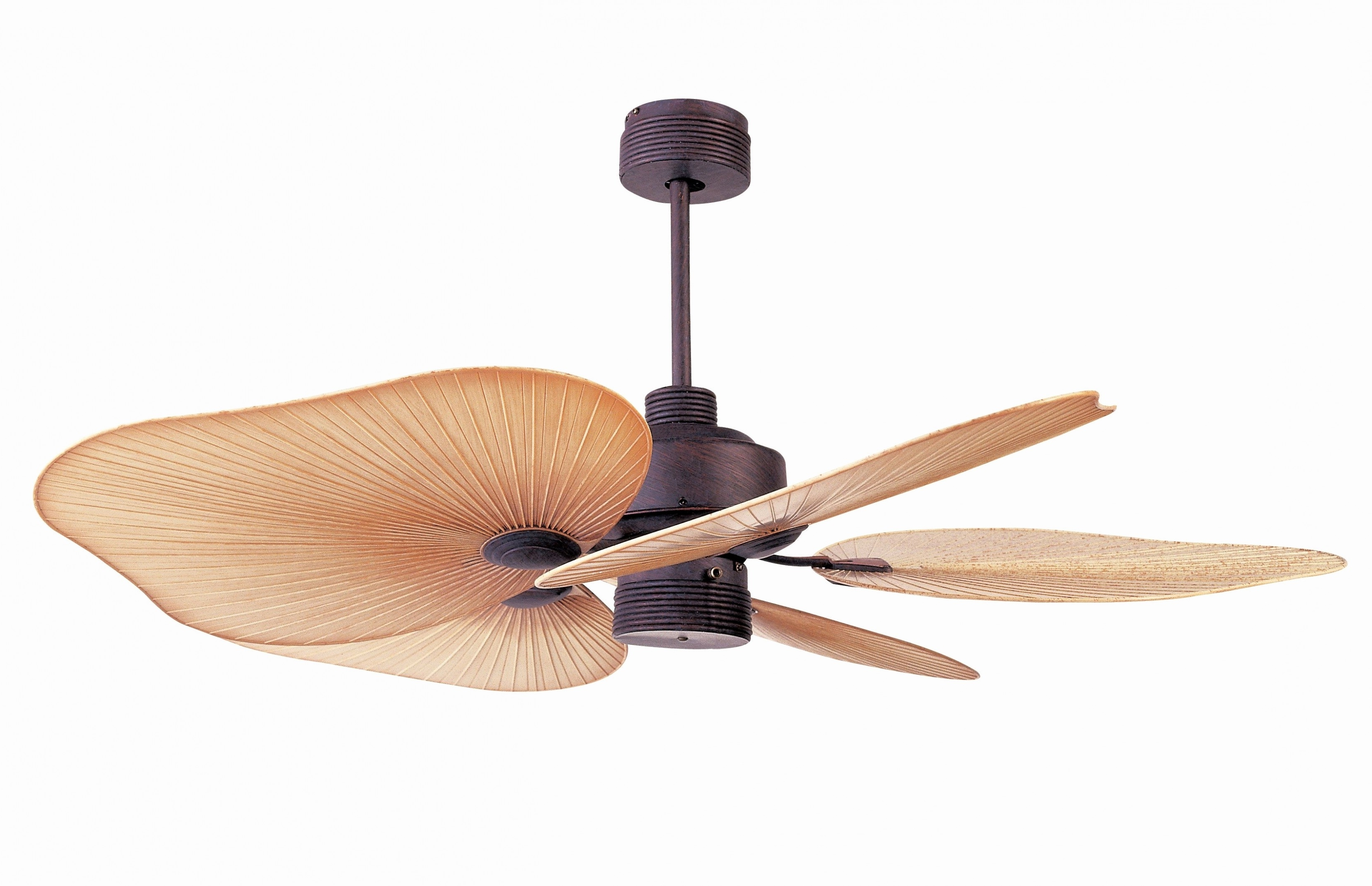 Fashionable Tropical Design Outdoor Ceiling Fans With Balancing A Ceiling Fan Fresh Tropical Ceiling Fans Ideas (View 17 of 20)