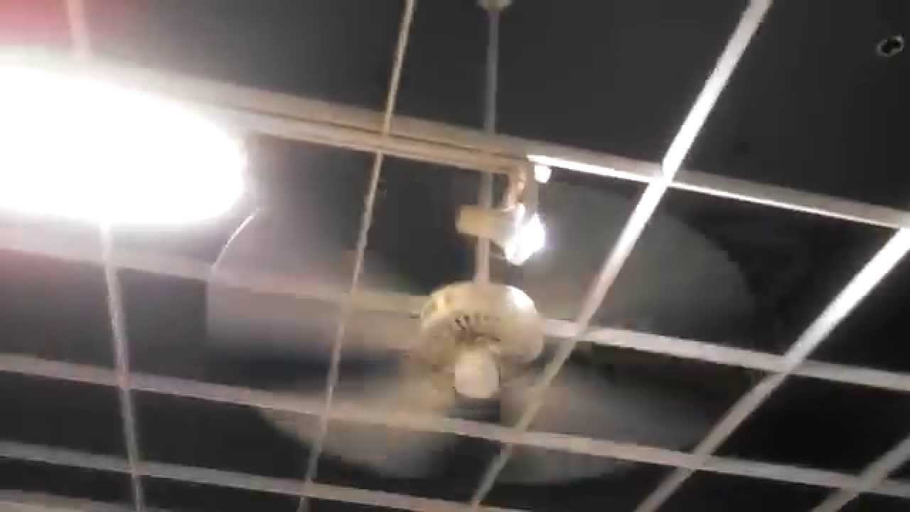 Hunter Original And Craftmade Ceiling Fans In A Kmart Little Caesars In Current Kmart Outdoor Ceiling Fans (View 2 of 20)