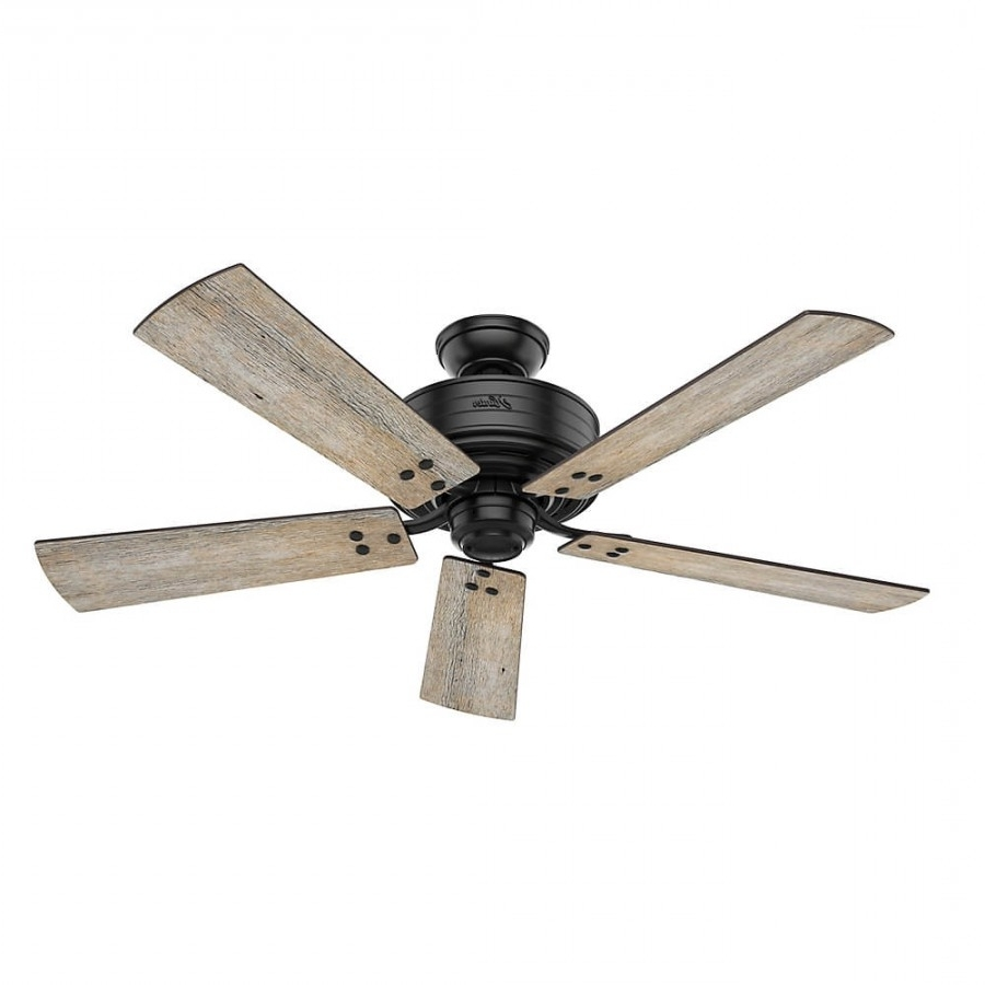 Most Recently Released Hunter 55078 Cedar Key 1 Led Light 52 Inch Outdoor Ceiling Fan In For 52 Inch Outdoor Ceiling Fans With Lights (View 15 of 20)