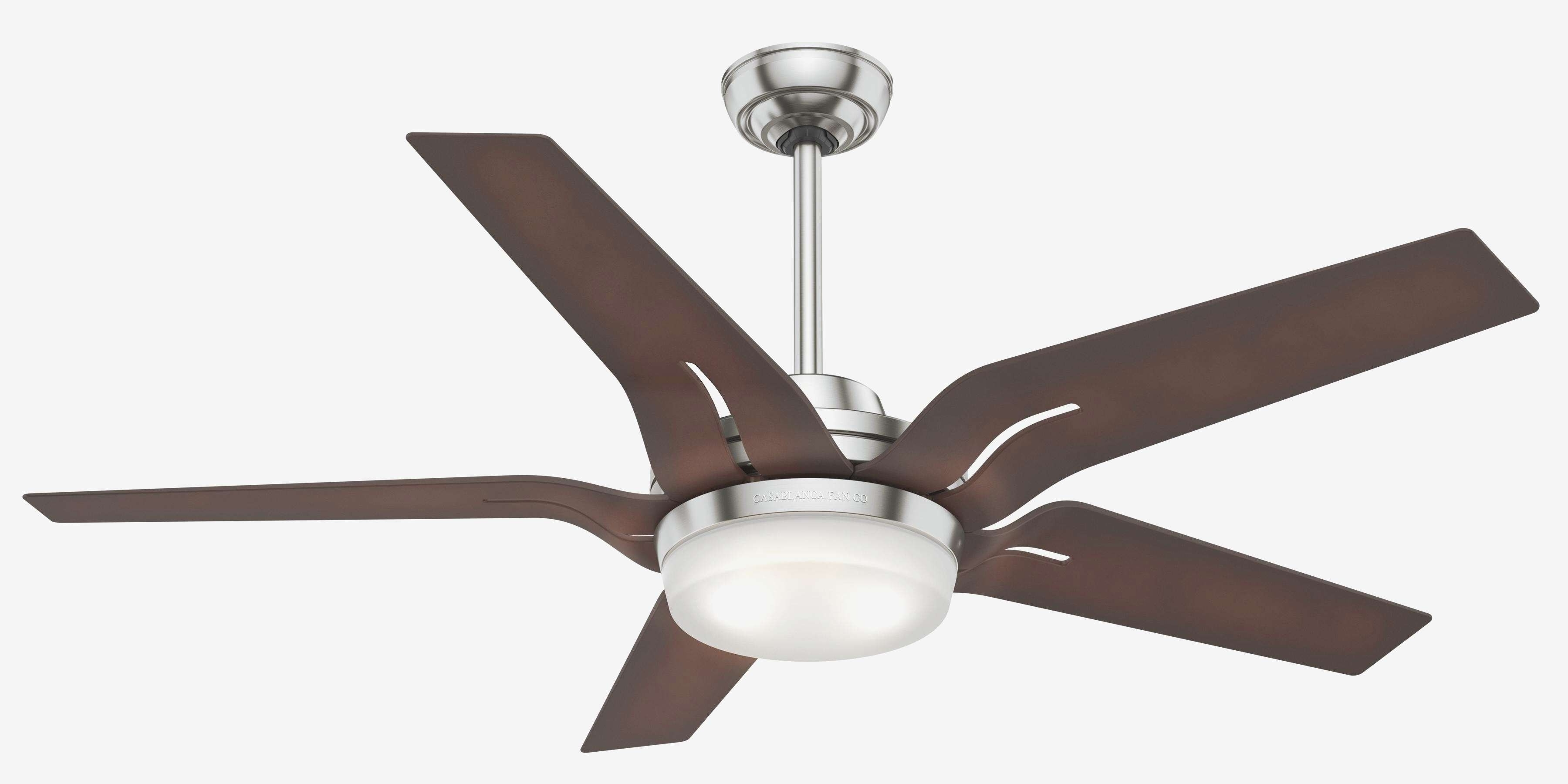 Outdoor Ceiling Fans For Windy Areas For Best And Newest Calmly Outdoor Ceiling Fan No Light Lighting Design Ideas Ceiling (Gallery 12 of 20)