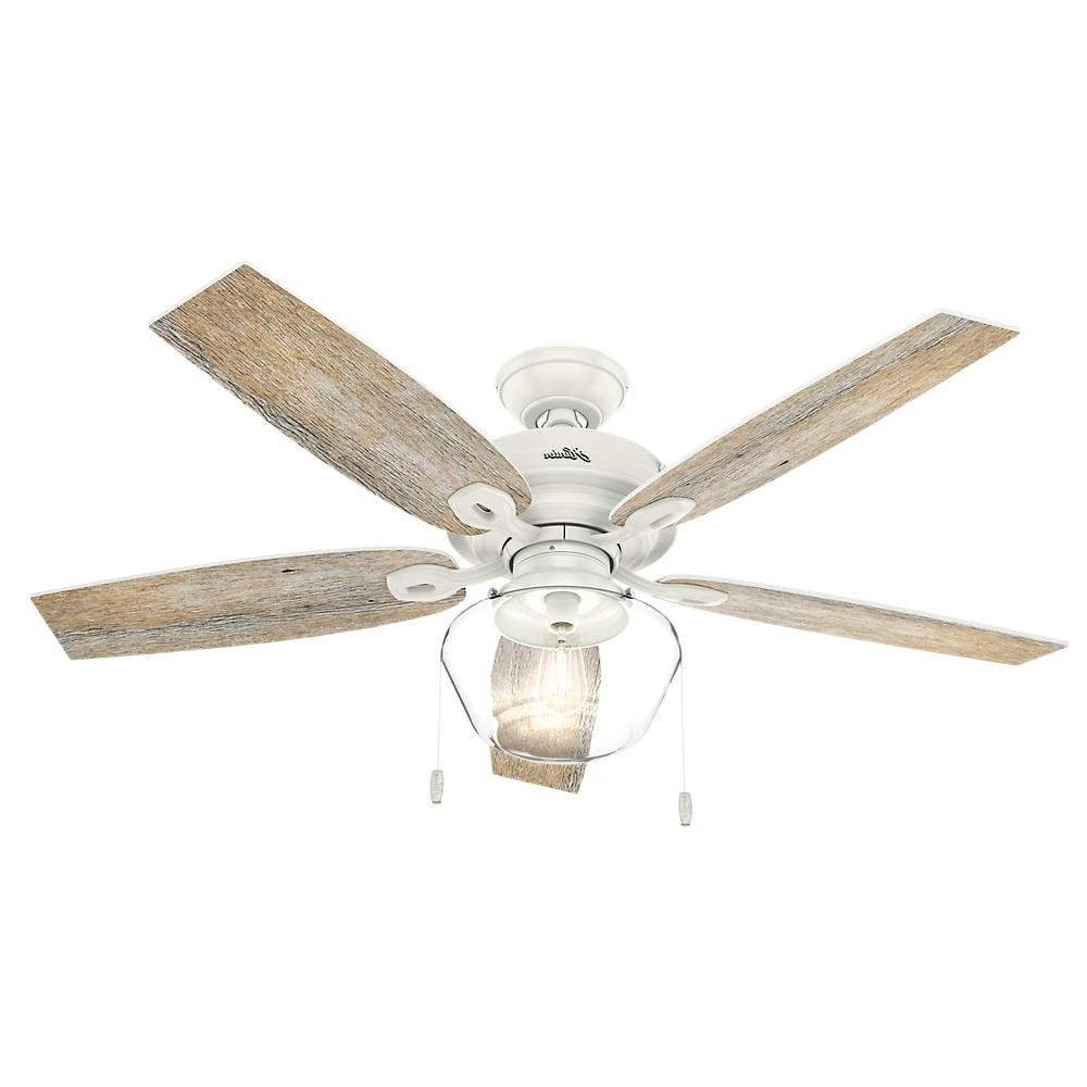 Popular Outdoor Ceiling Fans Under $75 Within Hunter – Outdoor – Ceiling Fans – Lighting – The Home Depot (View 16 of 20)