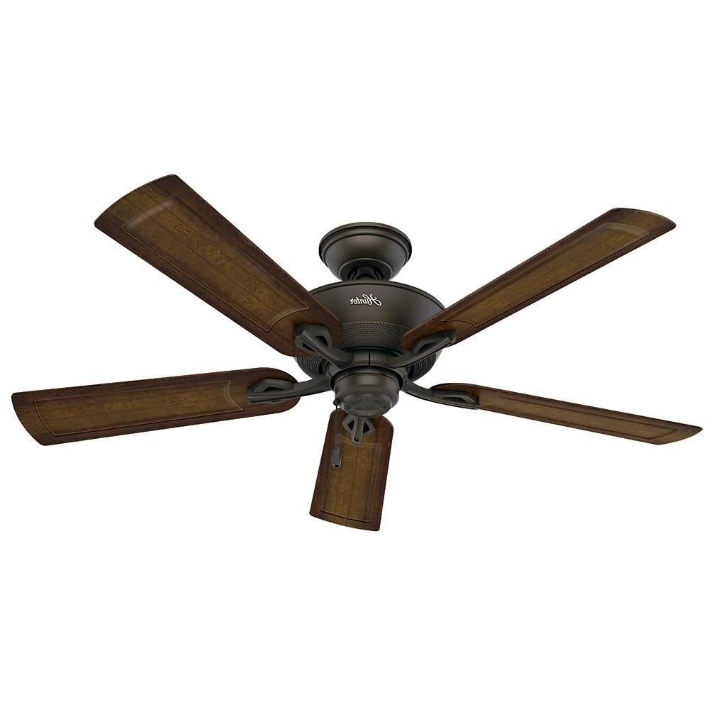 Popular Outdoor Ceiling Fans With Pull Chain Intended For Hunter Caicos 52 In. Indoor/outdoor New Bronze Wet Rated Ceiling Fan (Gallery 3 of 20)