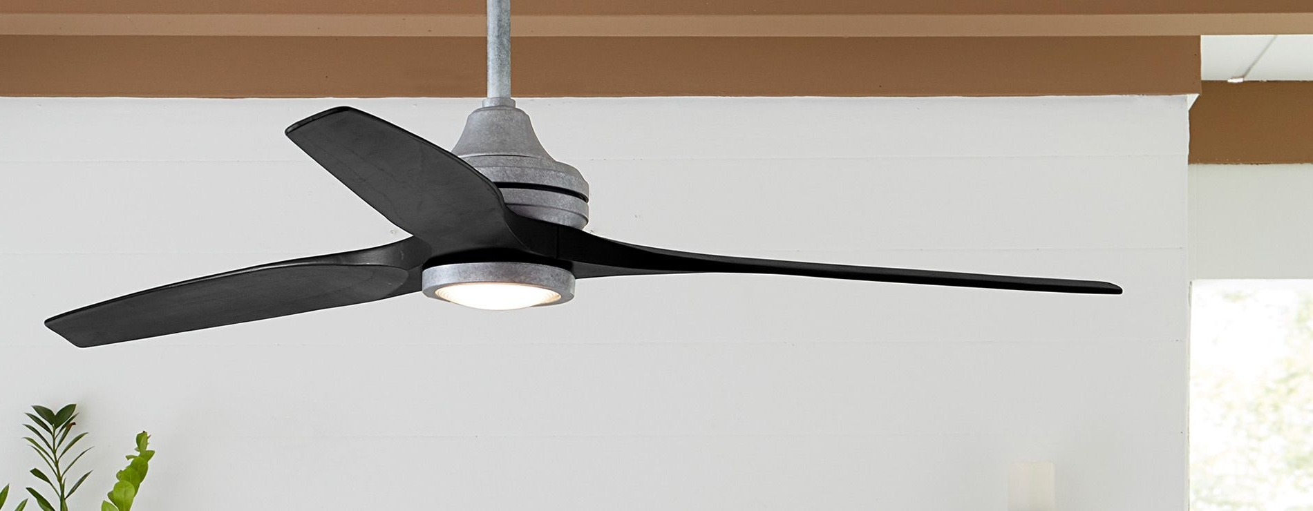 Preferred Fanimation :: Home With Tropical Design Outdoor Ceiling Fans (View 9 of 20)
