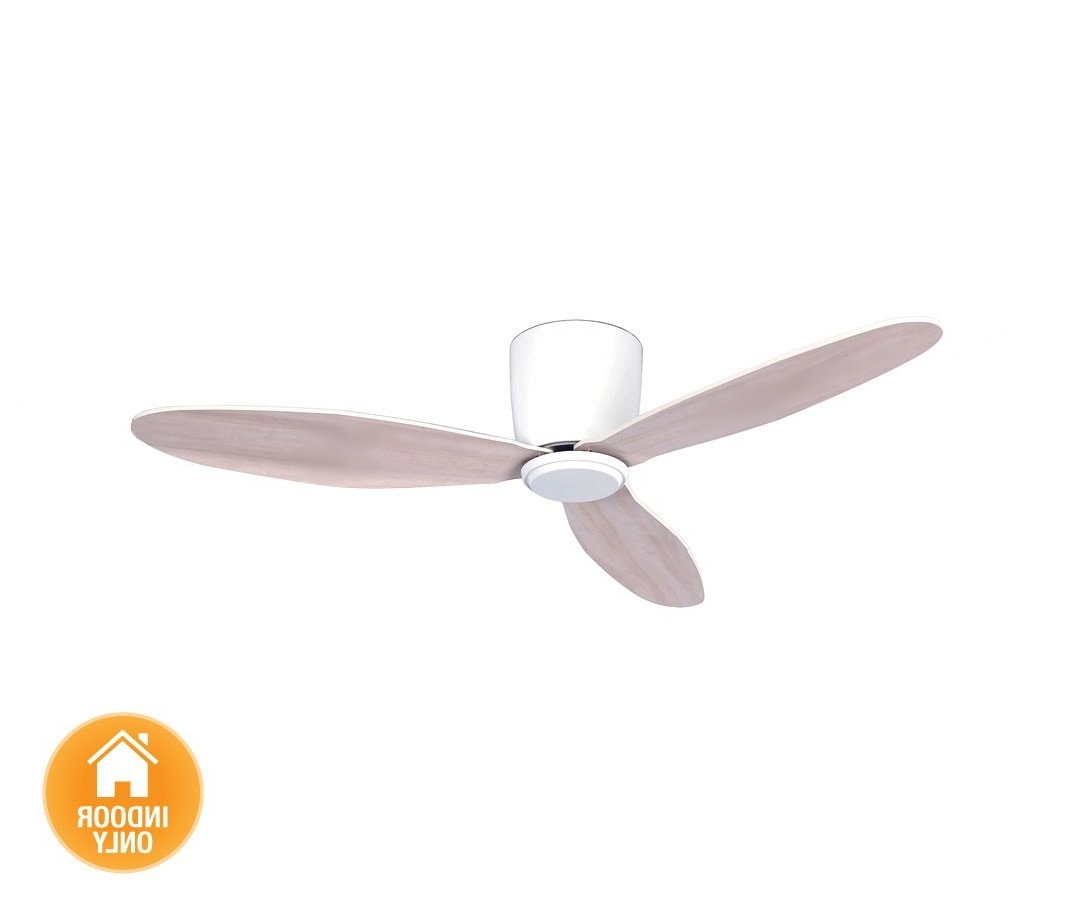 Well Known Outdoor Ceiling Fans With Dc Motors Regarding Energy Saving Ceiling Fan – For Low Ceilings, Casa Bruno – Ceiling (View 9 of 20)