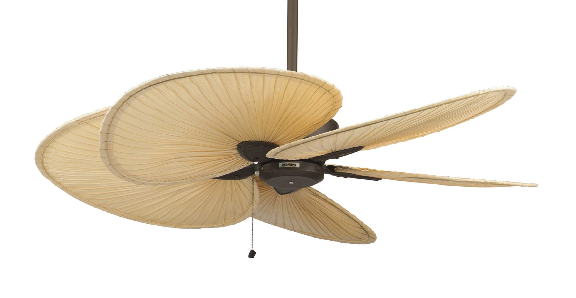 Widely Used Outdoor Ceiling Fans With Palm Blades For Ceiling Fans With Palm Blades – Photos House Interior And Fan (View 18 of 20)