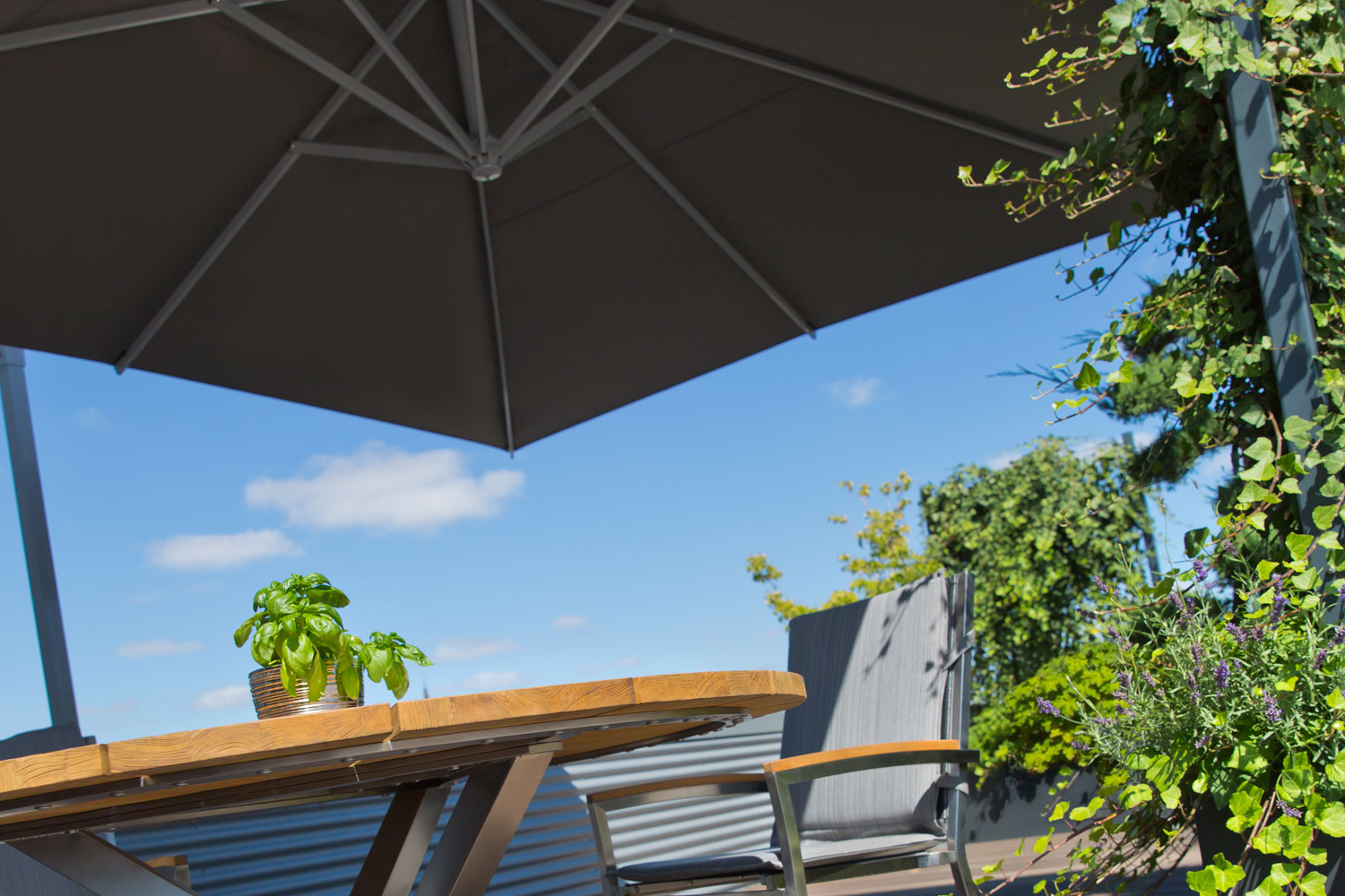 Best And Newest Wier Market Umbrellas With Regard To Caravita – Exclusive Commercial Patio Umbrellas (View 5 of 20)