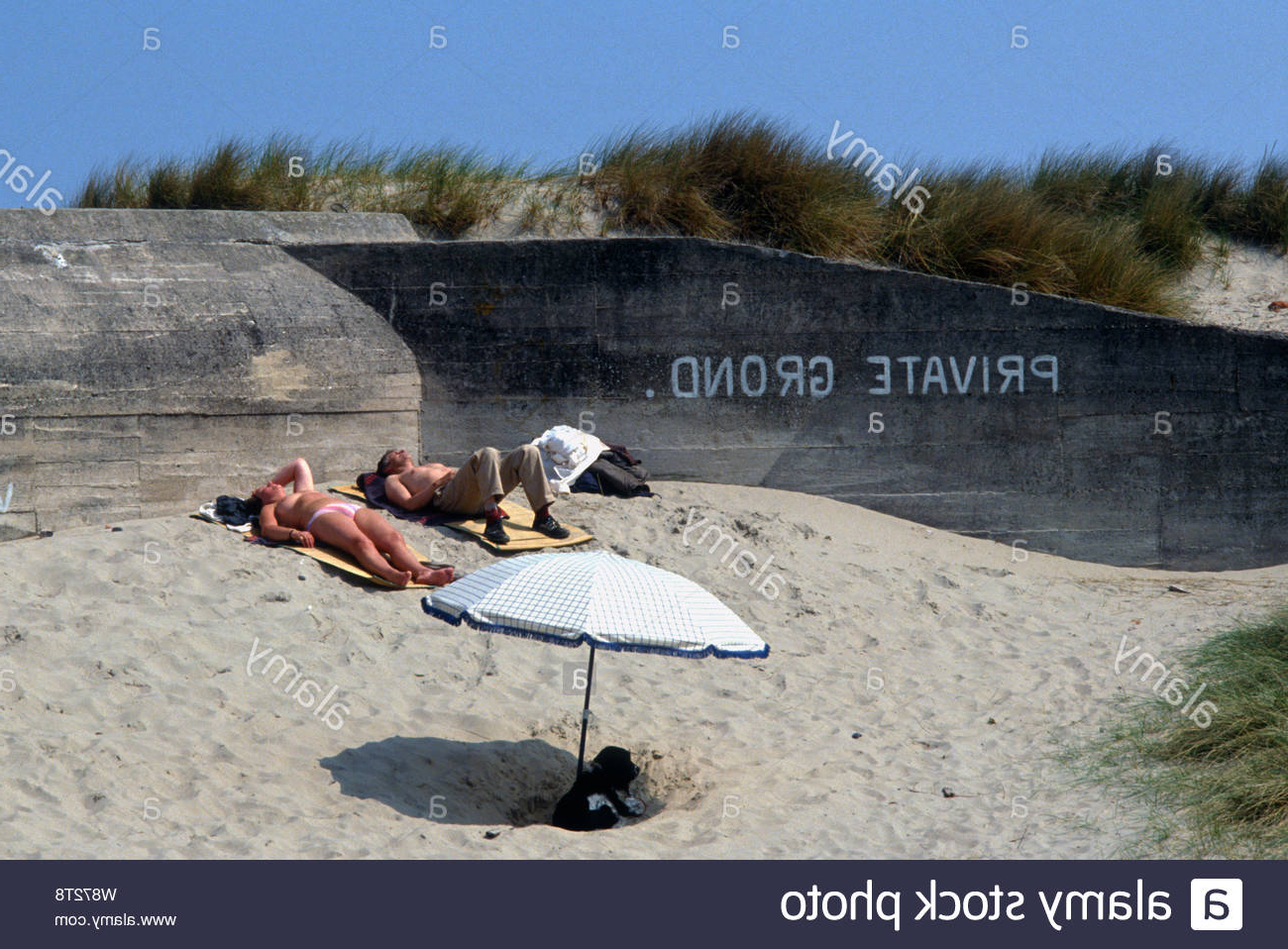 Preferred Esai Beach Umbrellas Intended For A Dog Of Belgium Stock Photos & A Dog Of Belgium Stock Images – Page (View 18 of 20)
