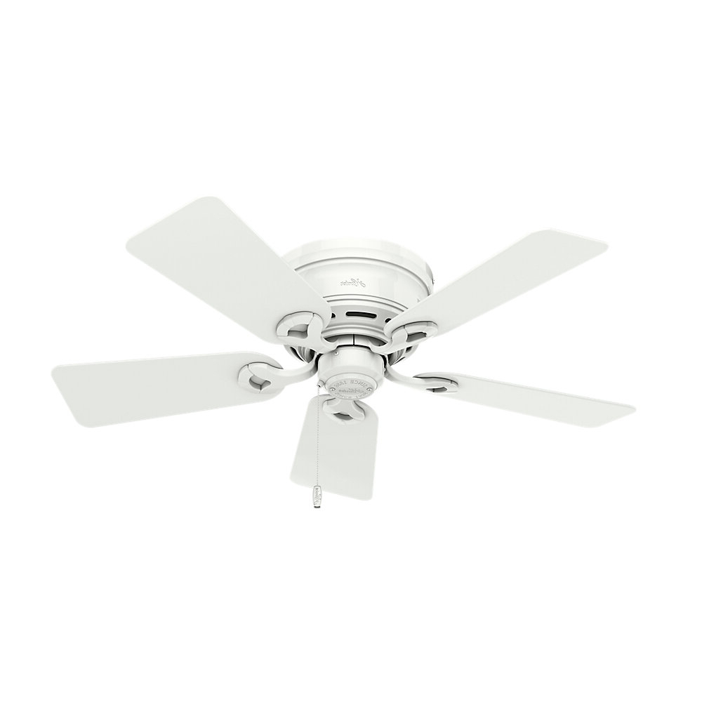 """42"""" Conroy 5 Blade Ceiling Fan, Light Kit Included For Most Up To Date Conroy 5 Blade Ceiling Fans (View 3 of 20)"""