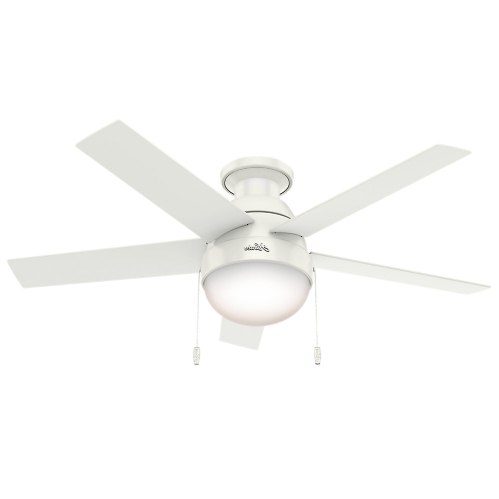 Featured Photo of Anslee 5 Blade Ceiling Fans