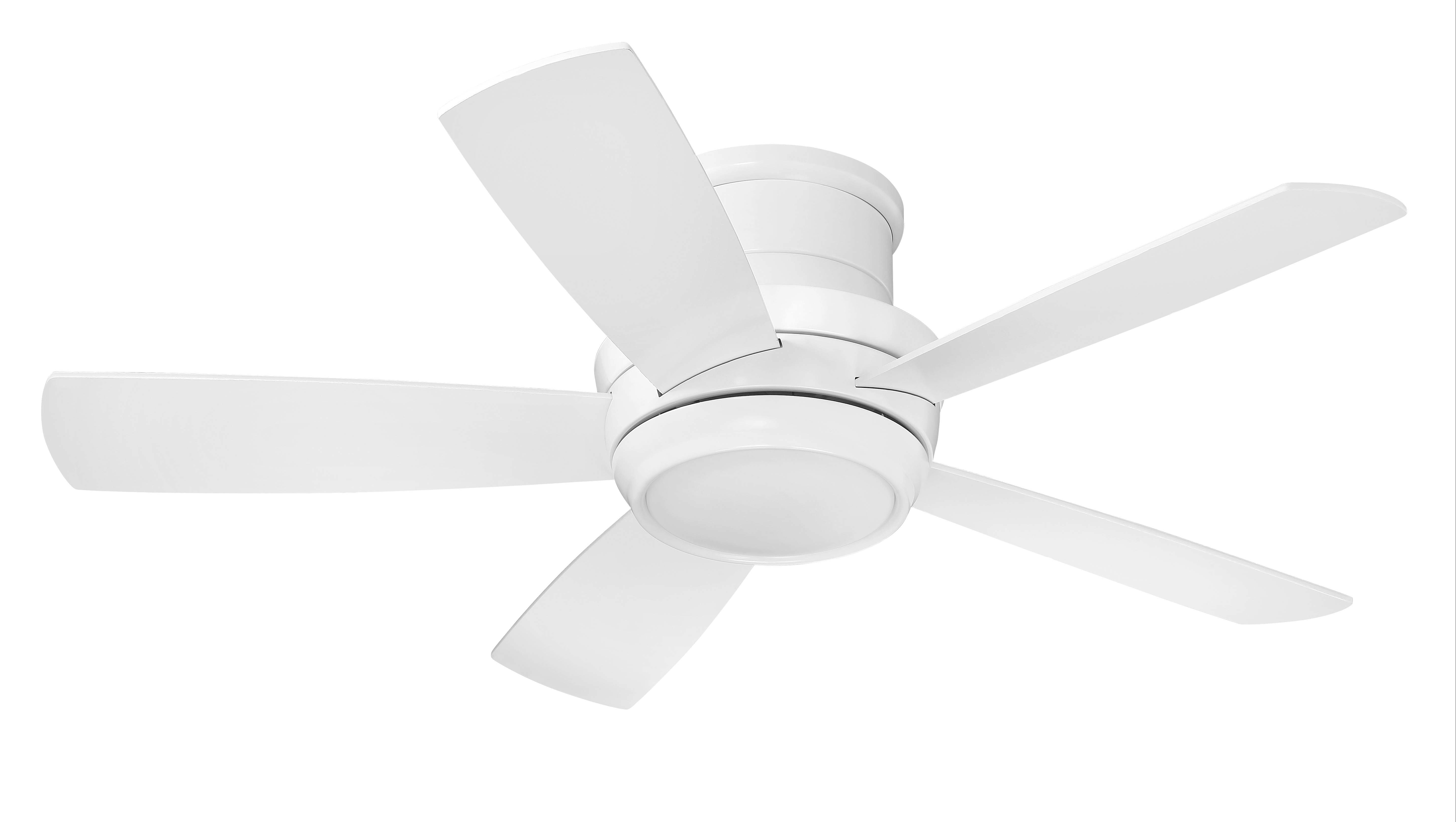 Ceiling Fans You'll Love In  (View 9 of 20)