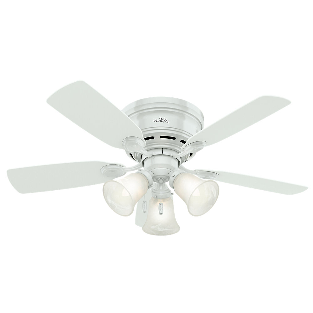 "Hamlett 5 Blade Ceiling Fans Inside Fashionable Details About Darby Home Co 42"" Hailee 5 Blade Ceiling Fan, Light Kit  Included (Gallery 11 of 20)"