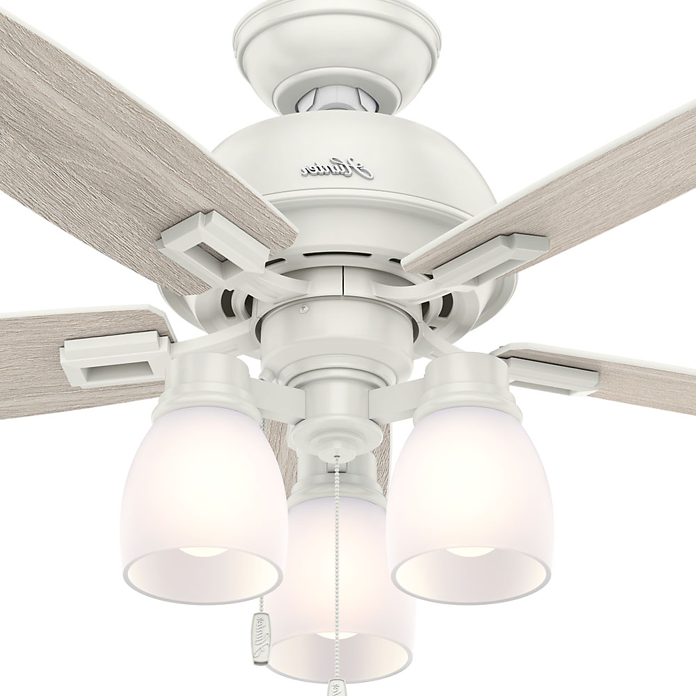 "Hunter 44"" Donegan Three Light Onyx Bengal Ceiling Fan With Light Regarding Fashionable Donegan 5 Blade Led Ceiling Fans (View 20 of 20)"