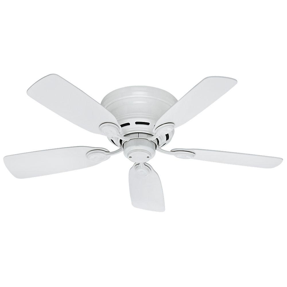 """Hunter Fan 42"""" Hunter Low Profile 5 Blade Ceiling Fan Throughout Current Builder Low Profile 5 Blade Ceiling Fans (View 12 of 20)"""