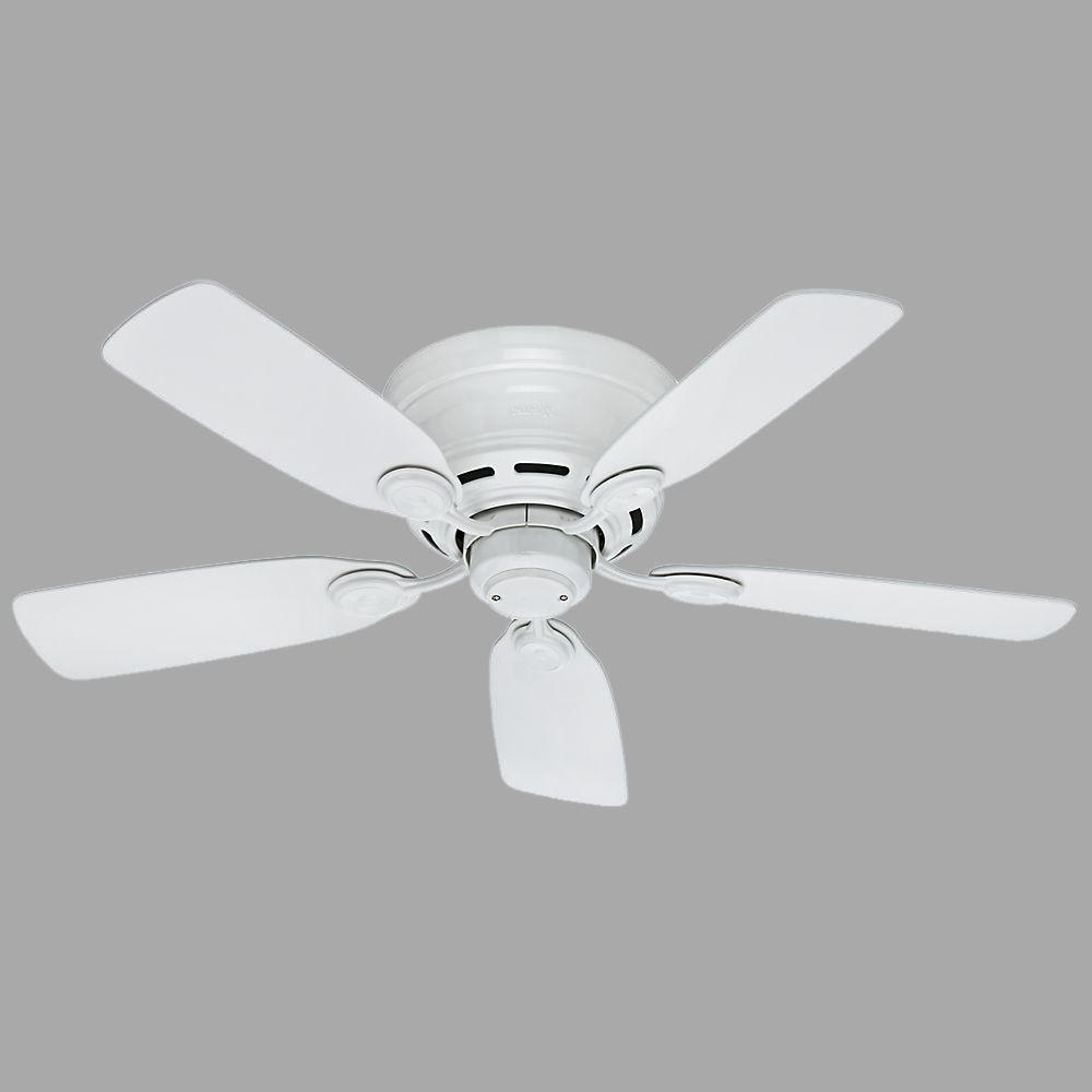 Hunter Low Profile 5 Blade Ceiling Fans Intended For Widely Used Hunter Low Profile 42 In. Indoor Snow White Ceiling Fan (Gallery 6 of 20)