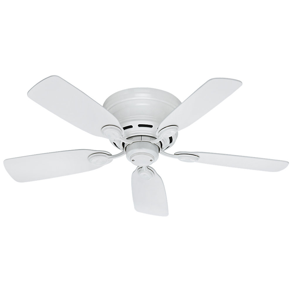 """Hunter Low Profile 5 Blade Ceiling Fans Throughout Current 42"""" Hunter Low Profile 5 Blade Ceiling Fan (Gallery 12 of 20)"""