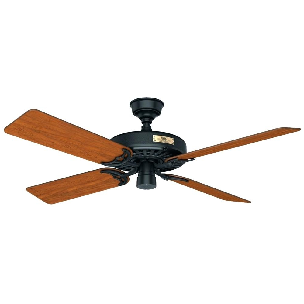 Hunter Original Ceiling Fan Black Front Zoom 52 With Light Inside Popular Caged Crystal 5 Blade Ceiling Fans (View 12 of 20)
