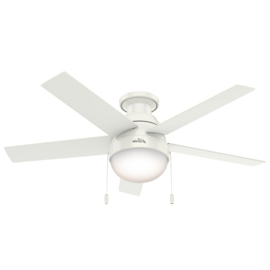 Latest Anslee 5 Blade Ceiling Fans With Regard To Hunter 59269 Anslee 46 Inch 2 Light Ceiling Fan In Fresh White With 5 Fresh  White Blade And Cased White Glass (View 13 of 20)