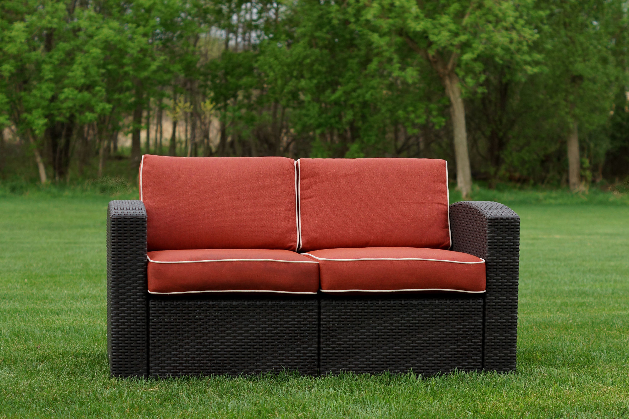 Mendelson Loveseats With Cushion With 2019 Loggins Loveseat With Cushions (View 13 of 20)