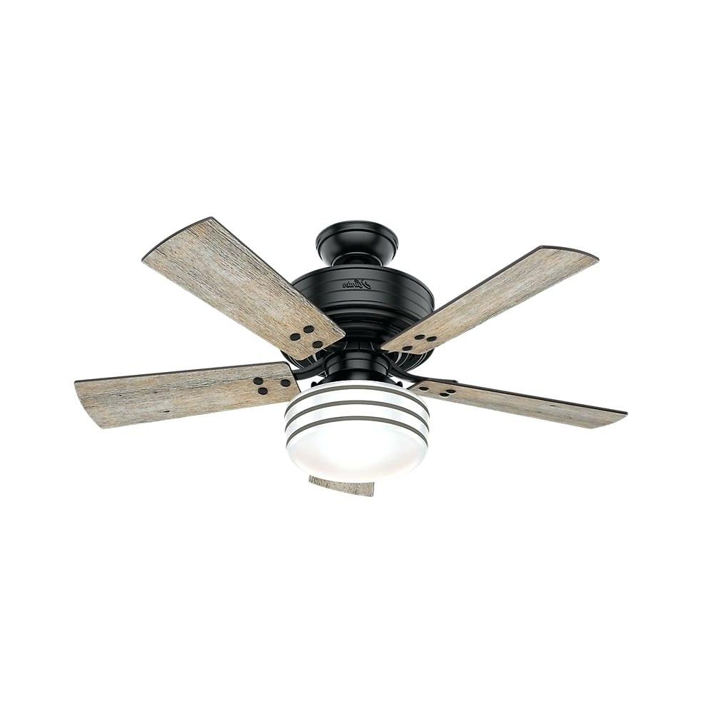 Morton 3 Blade Ceiling Fans Within Well Known Black Ceiling Fan With Light – Tommorton (View 18 of 20)