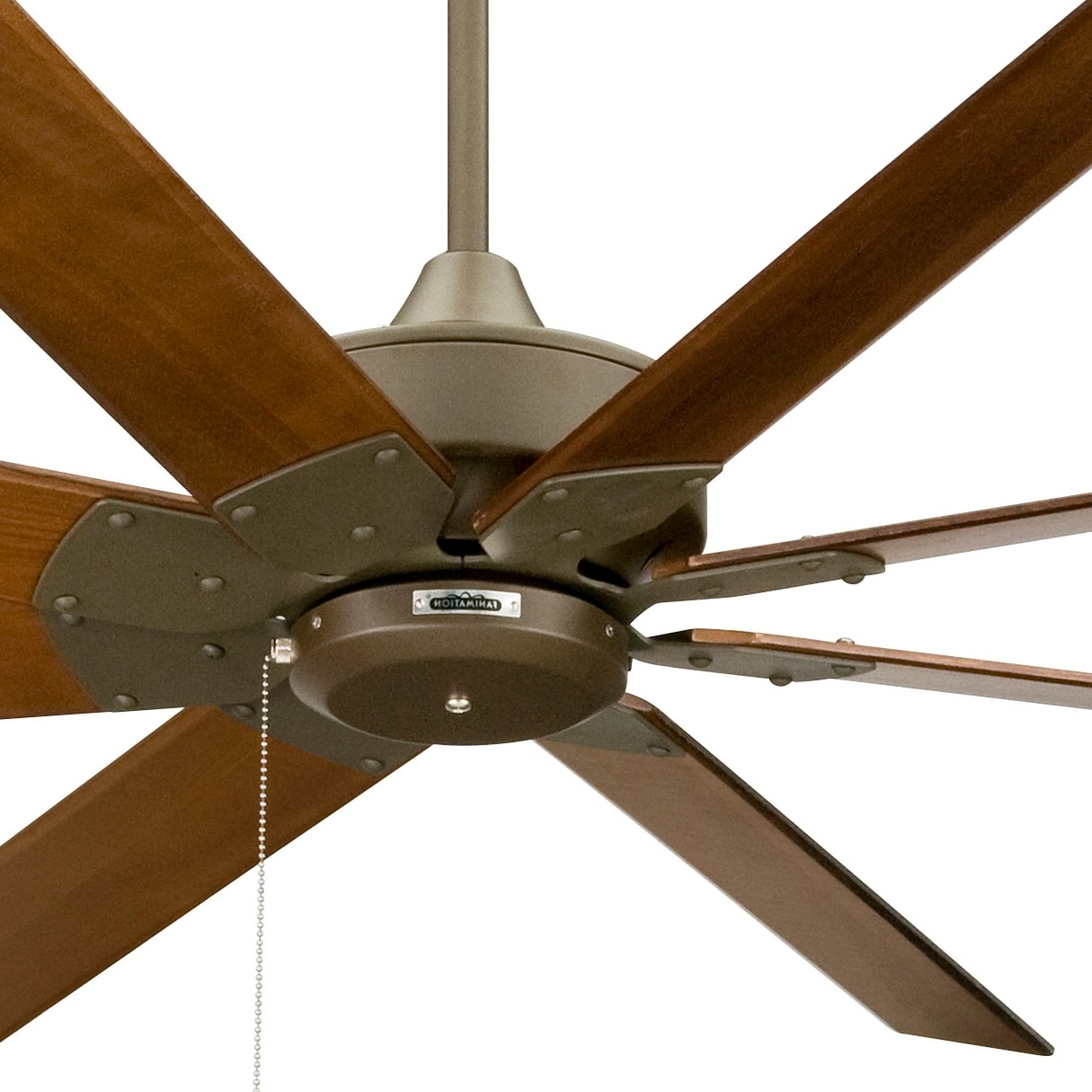 Newest Fanimation Levon Pertaining To Levon 8 Blade Ceiling Fans (View 8 of 20)
