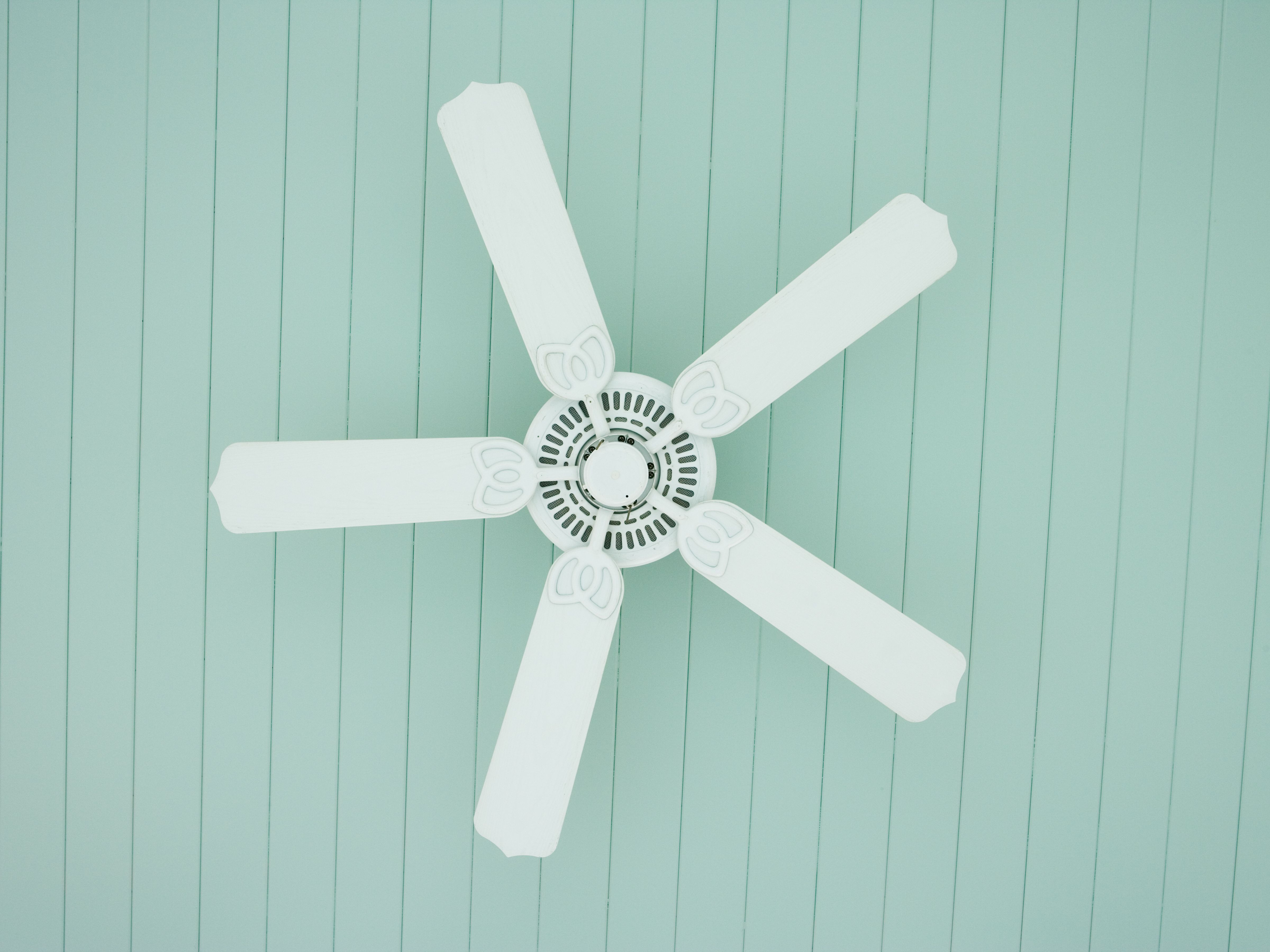 Wave 3 Blade Ceiling Fans With Remote Intended For Recent The 7 Best Ceiling Fans Of (View 13 of 20)