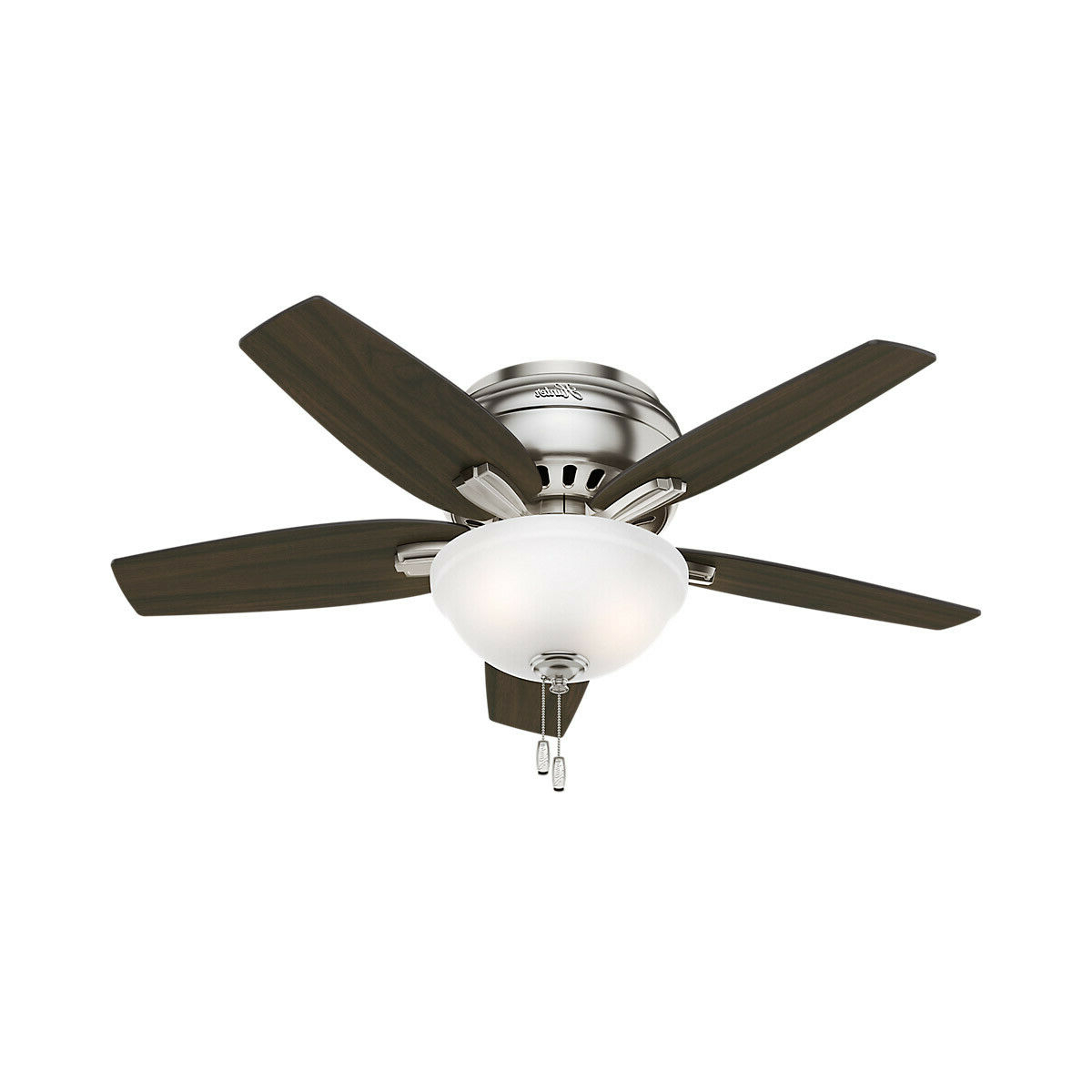 Well Known Banyan 5 Blade Ceiling Fans Regarding Hunter Newsome 42 In (View 19 of 20)